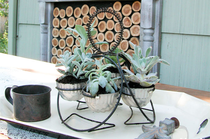Featured Repurposed Succulent Planter by Prodigal Pieces | www.prodigalpieces.com