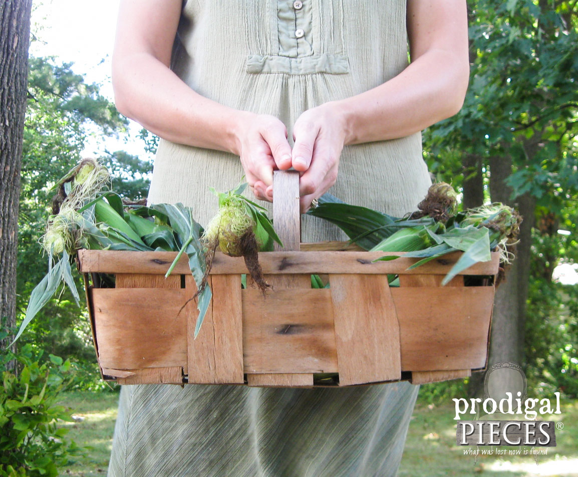 Basket of Sweet Corn for Crafting by Prodigal Pieces | www.prodigalpieces.com