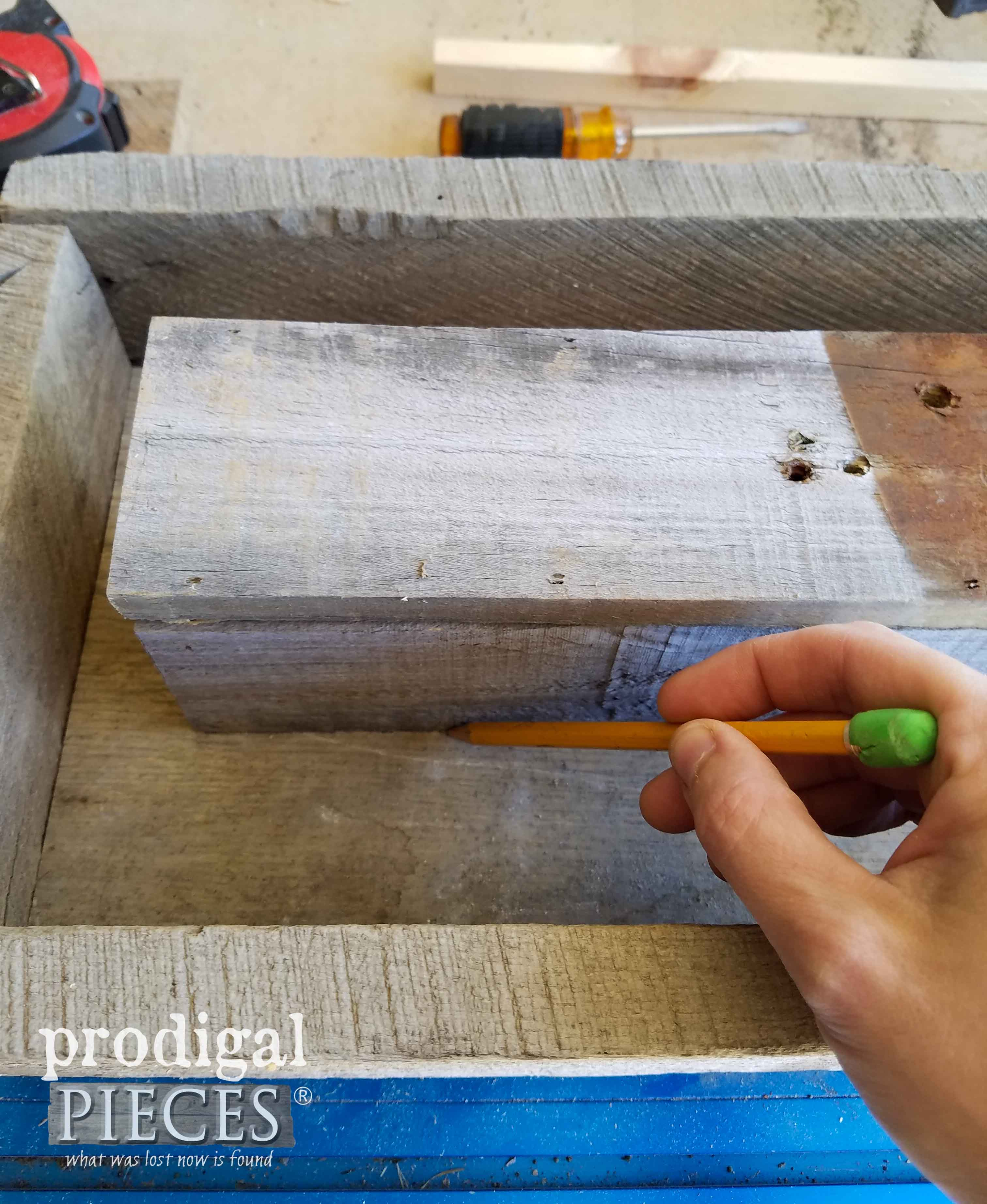 Tracing Planter Box | prodigalpieces.com