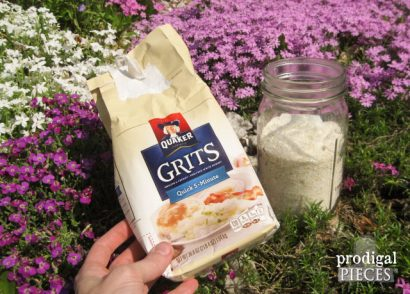Stop the Ants! Natural Ant Control Using a Grocery Store Found Item: GRITS | Prodigal Pieces | www.prodigalpieces.com #prodigalpieces