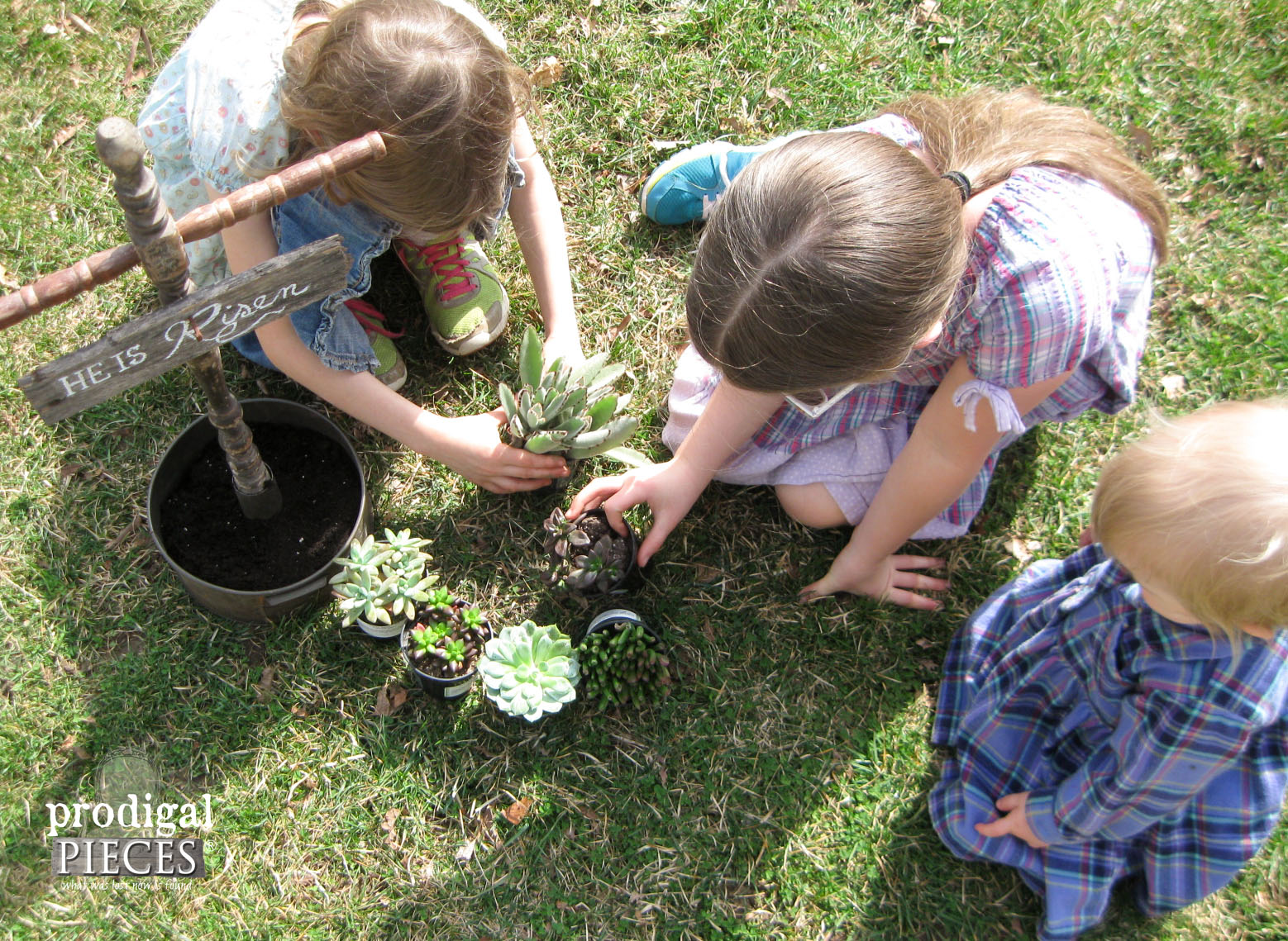 Girls Planting Succulents for Easter   Prodigal Pieces   www.prodigalpieces.com