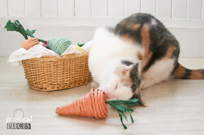 Featured DIY Natural Cat Toys by Prodigal Pieces | www.prodigalpieces.com