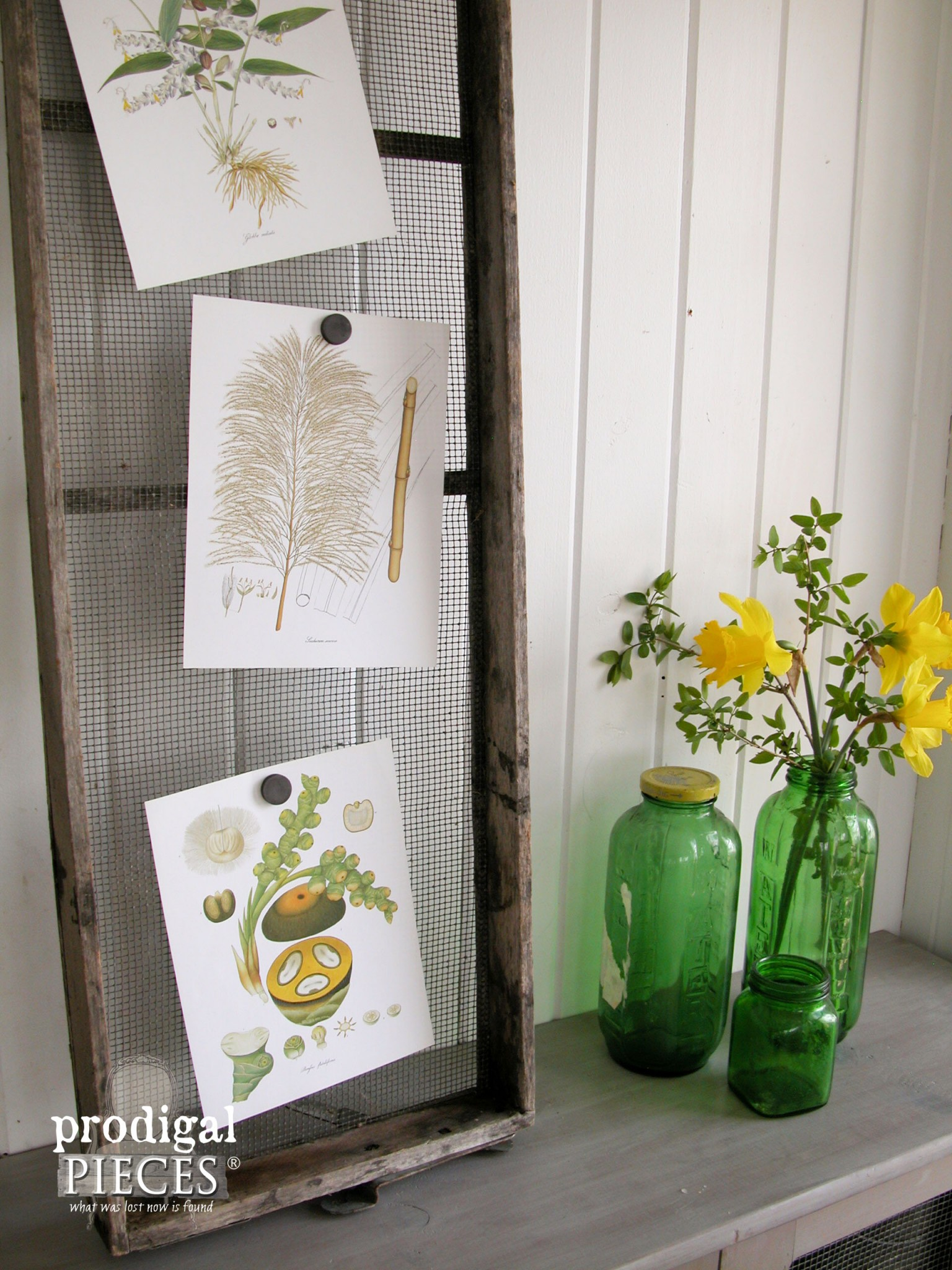 Repurposed Farmhouse Screen as Decor with Green Glass Bottles for Vases by Prodigal Pieces | www.prodigalpieces.com