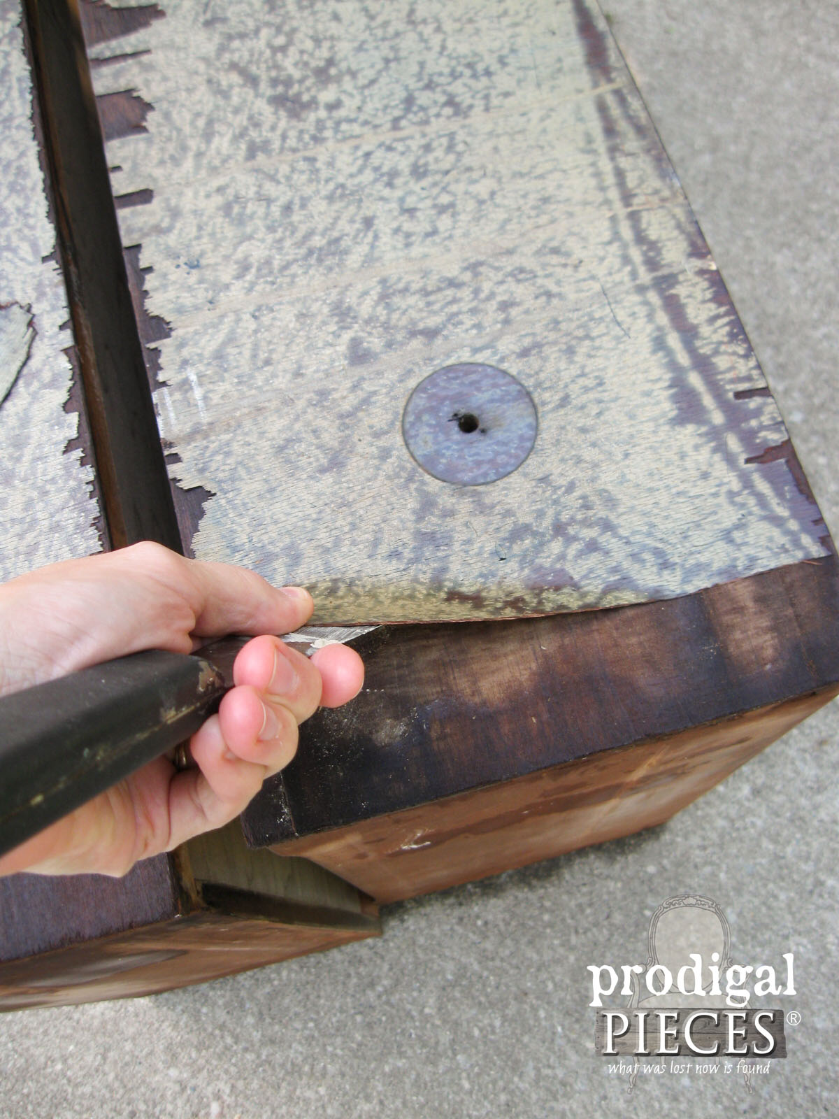 Removing Damaged Veneer with Towel Soak Method by Prodigal Pieces | www.prodigalpieces.com