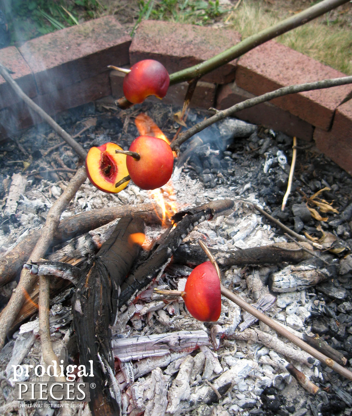 Campfire Roasting Stone Fruits for S'mores Replacement | Prodigal Pieces | www.prodigalpieces.com