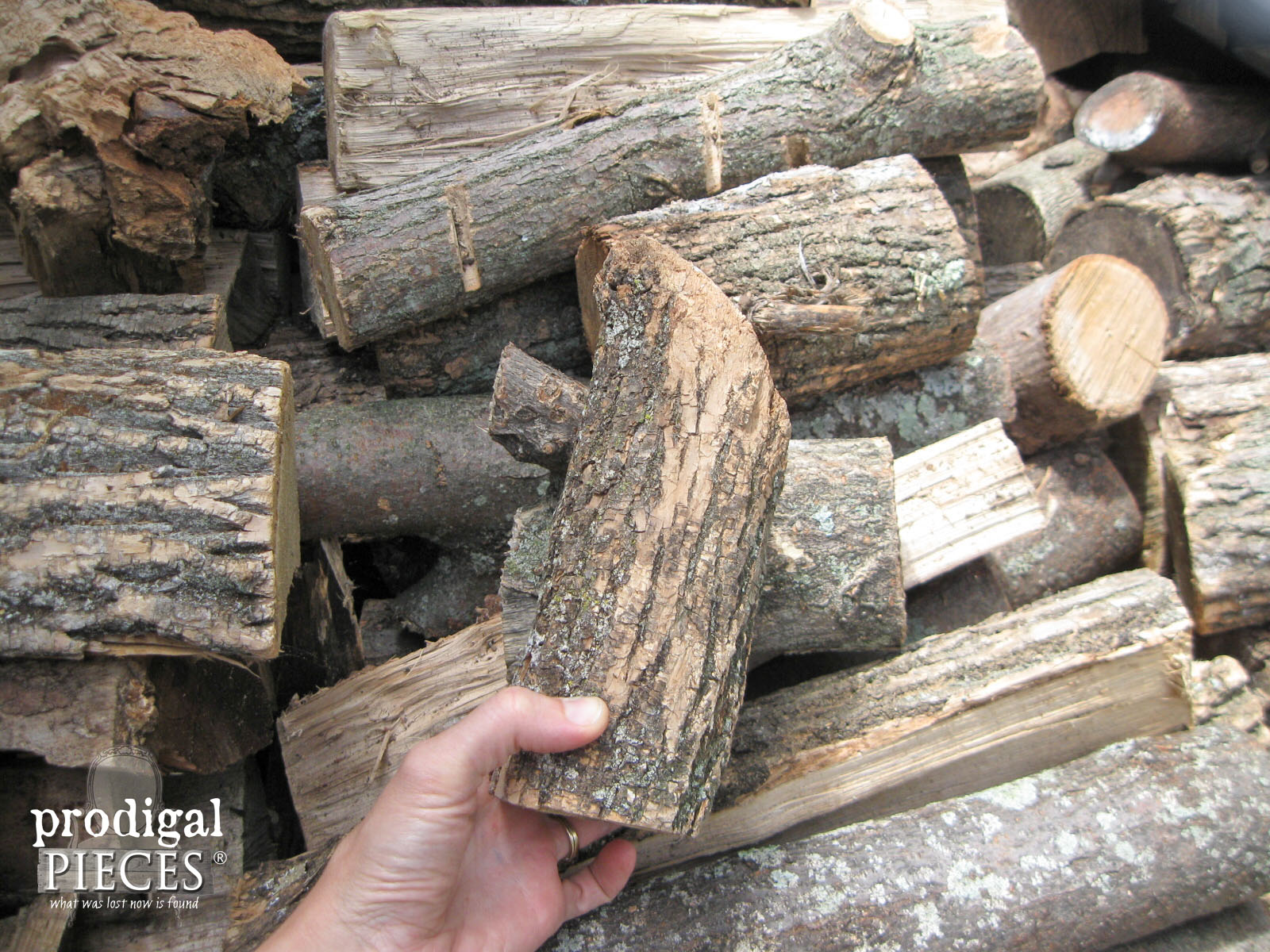 Choosing Wood for DIY Log Candlesticks | Prodigal Pieces | www.prodigalpieces.com