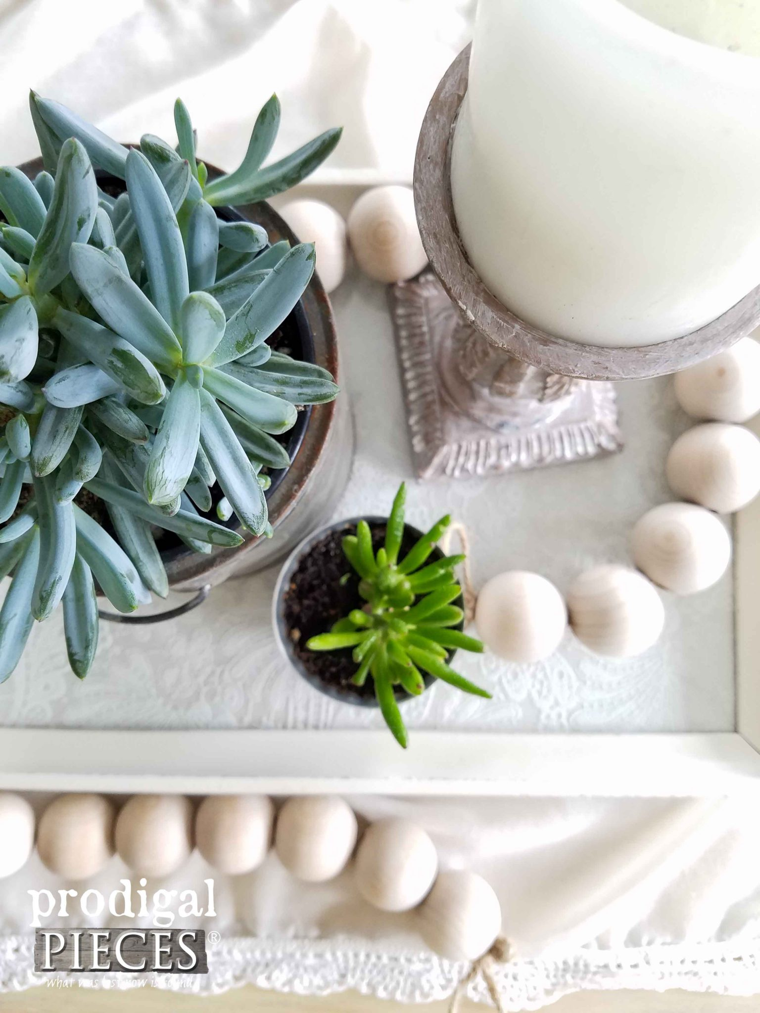 Succulents on Thrifted Tray by Prodigal Pieces | prodigalpieces.com