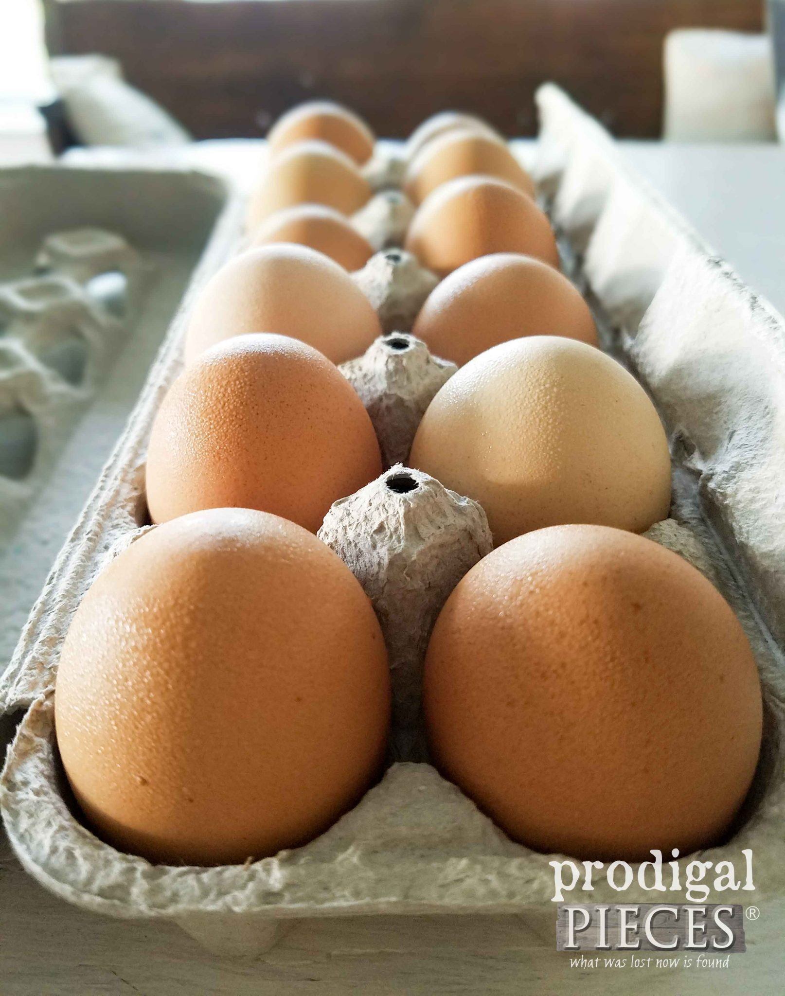 Farm Fresh Eggs by Prodigal Pieces | prodigalpieces.com