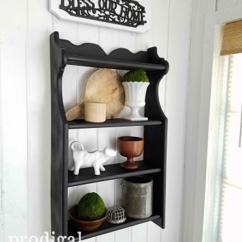 Modern Farmhouse Black Knick-Knack Shelf by Prodigal Pieces   prodigalpieces.com