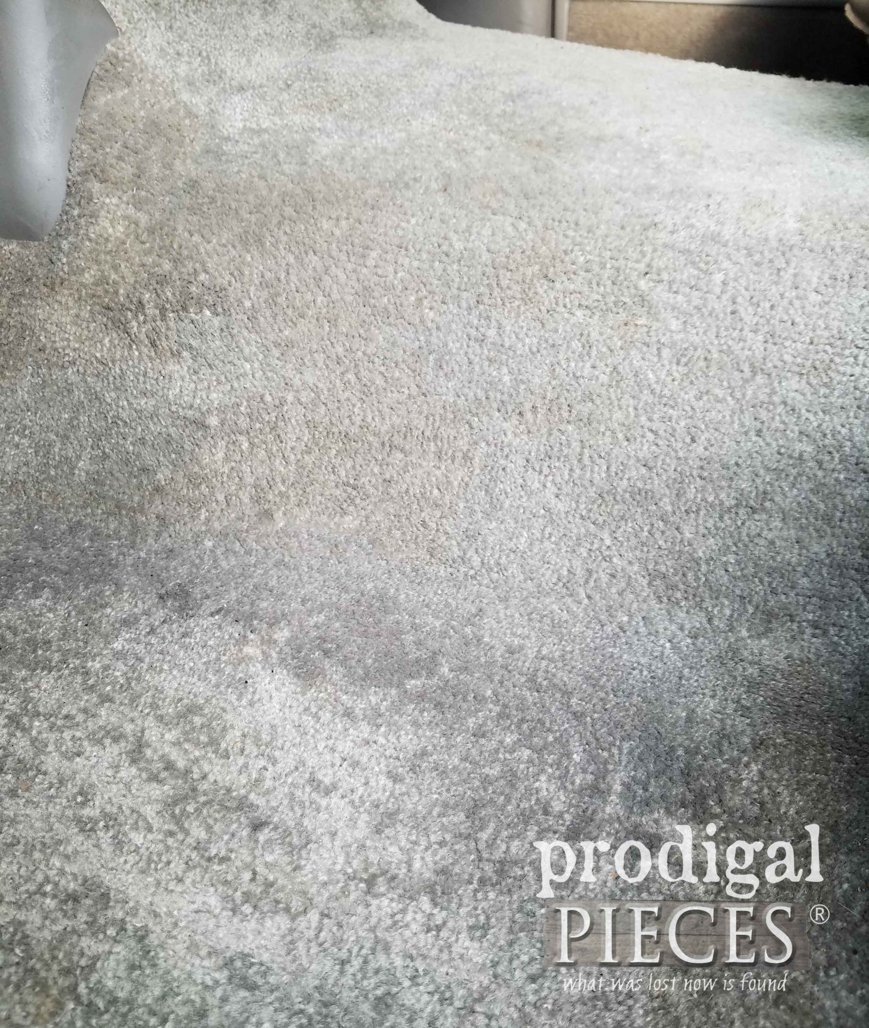 Truck Carpet Cleaning Closeup | prodigalpieces.com
