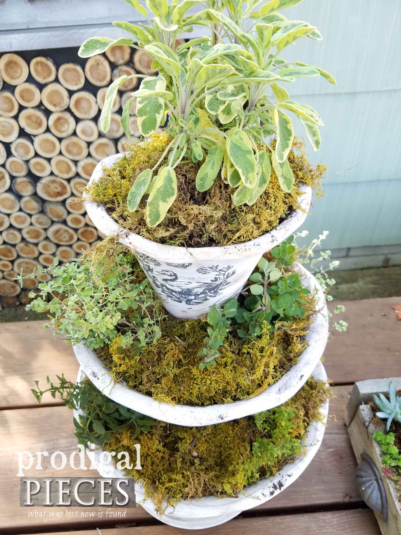 Tiered Planter with Herbs and Moss in a French Style by Prodigal Pieces | prodigalpieces.com