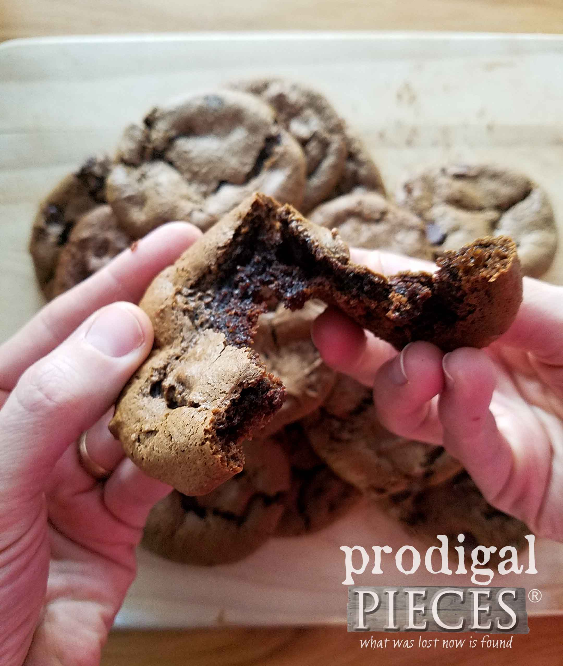 Absolutely delicious flourless chocolate cookies that whip up in a flash. Recipe at Prodigal Pieces | prodigalpieces.com