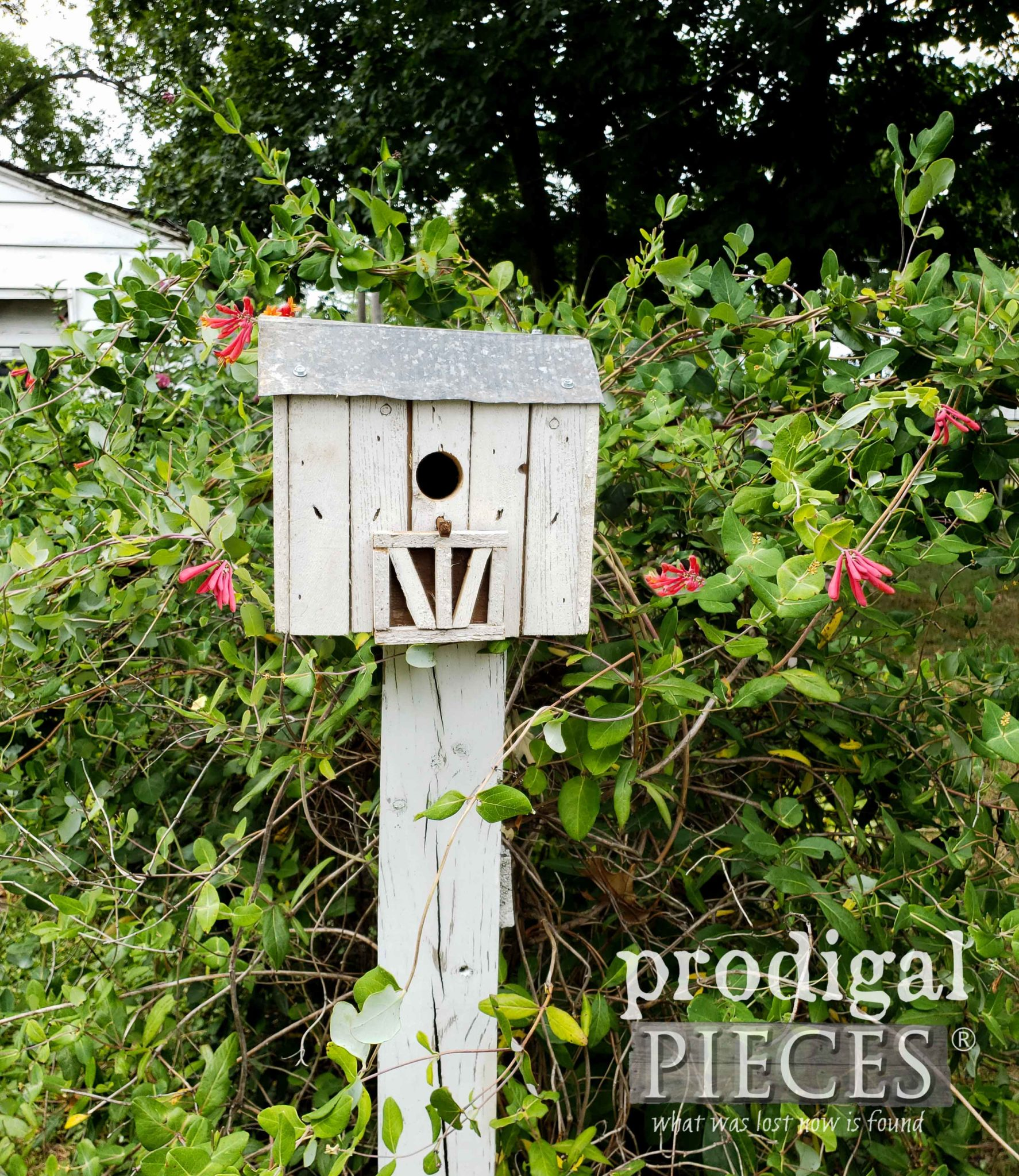 Rustic Barn Birdhouse Resting on Picket Fence Post | Handmade by Larissa of Prodigal Pieces | prodigalpieces.com