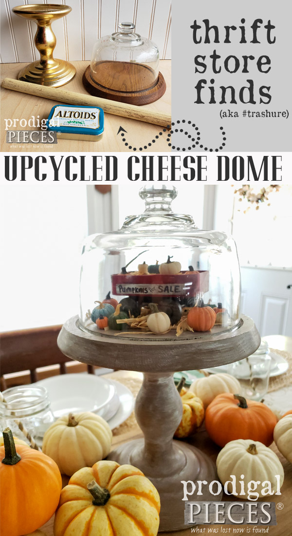 Oh how cute!! This upcycled cheese dome turned farmhouse style cloche is perfect for creating vignettes for fall, winter, summer, spring and more. Get the DIY details at Prodigal Pieces | prodigalpieces.com #prodigalpieces #handmade #fall #home #homedecor #crafts