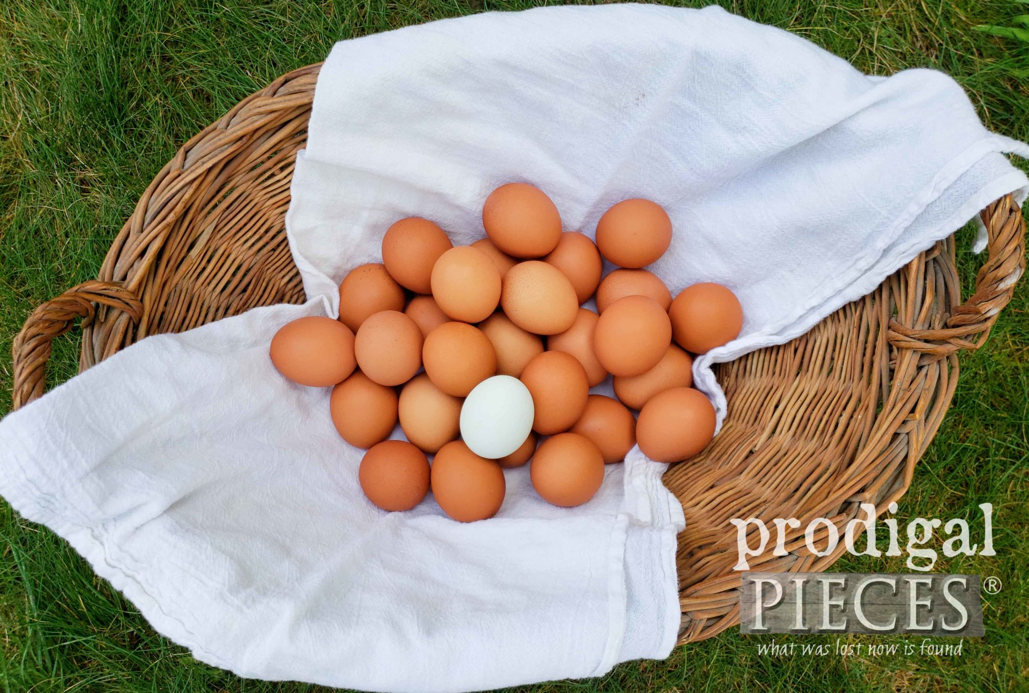 Dare to be Different ~ Farm Fresh Eggs Demonstrate God's Grace | prodigalpieces.com