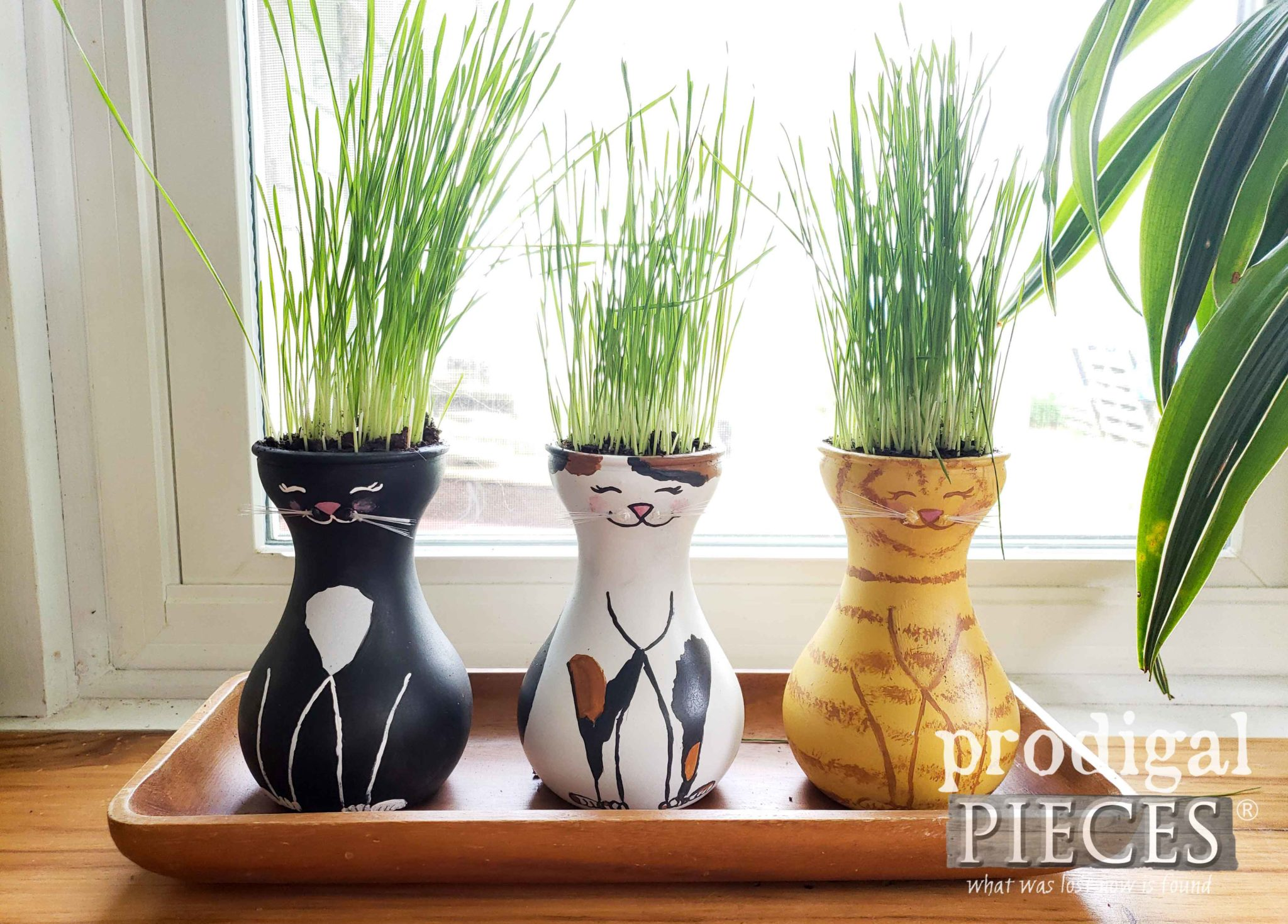 DIY Cat Grass Vases from Upcycled Hydroponic Vases by Larissa of Prodigal Pieces | prodigalpieces.com #prodigalpieces #diy #handmade #pets #home #dogs #health #food #garden