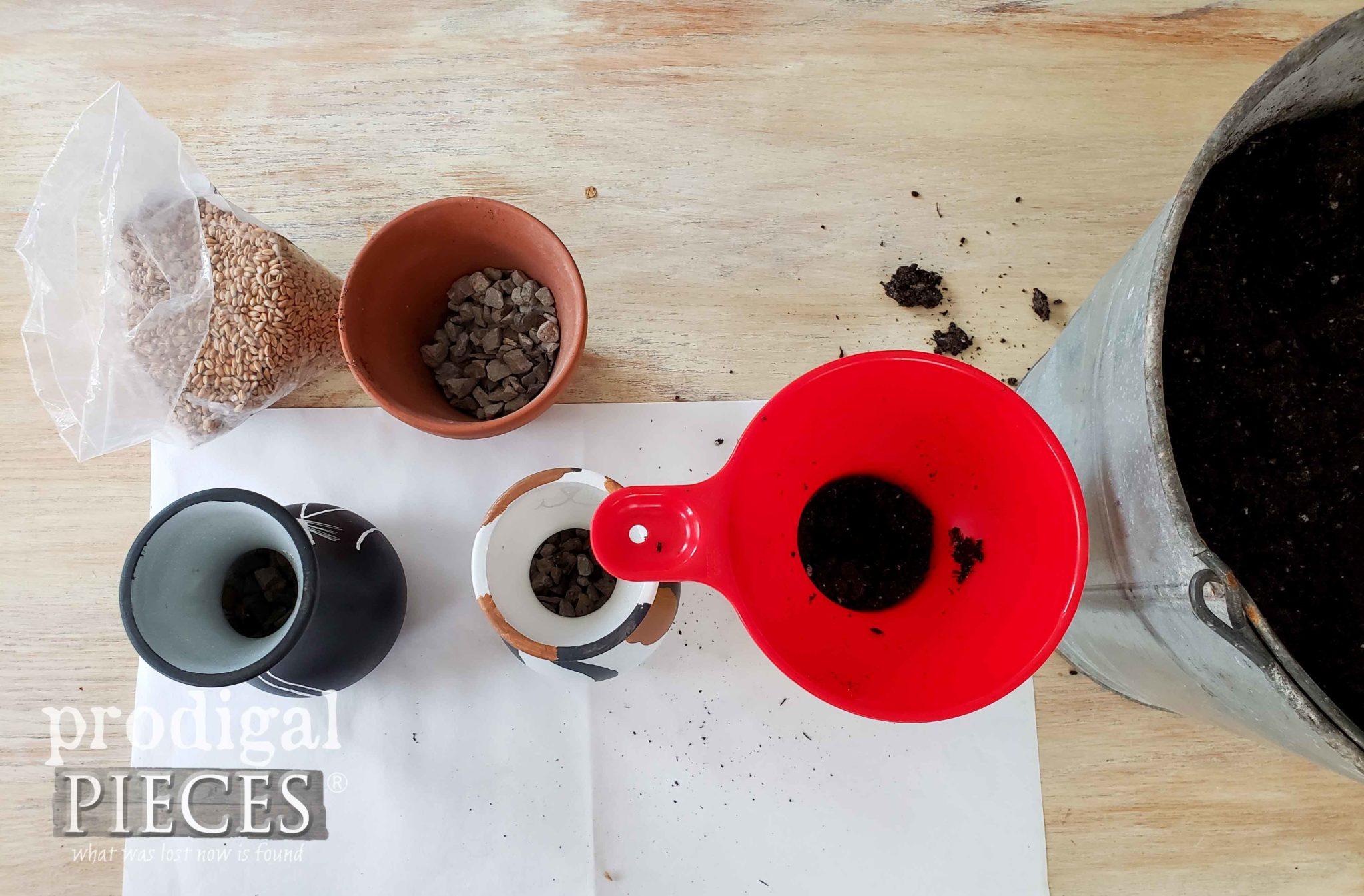 Filling Cat Grass Wheat Grass Jars | prodigalpieces.com