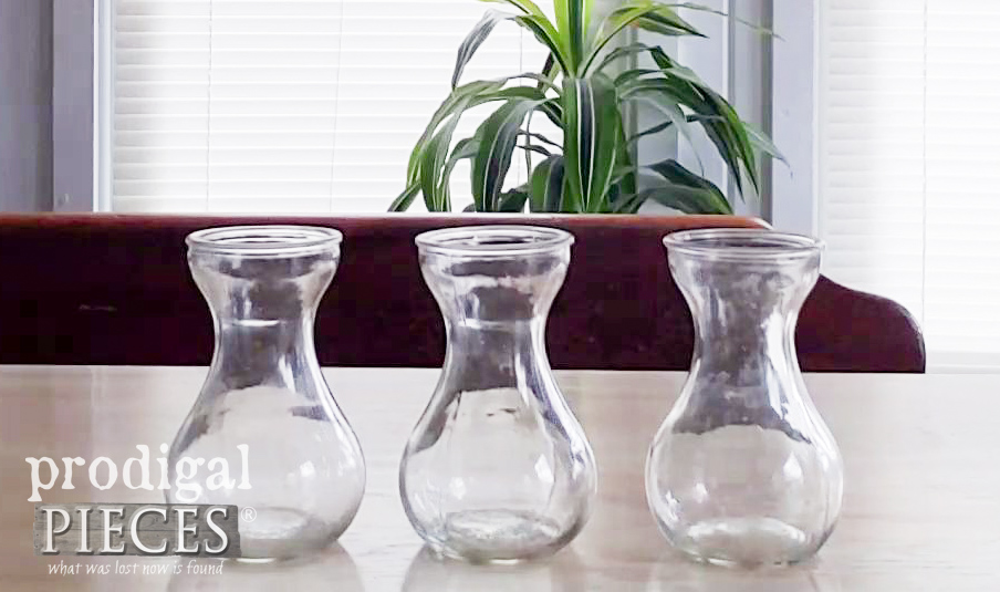 Hydroponic Vases for Forcing Spring Bulbs | prodigalpieces.com