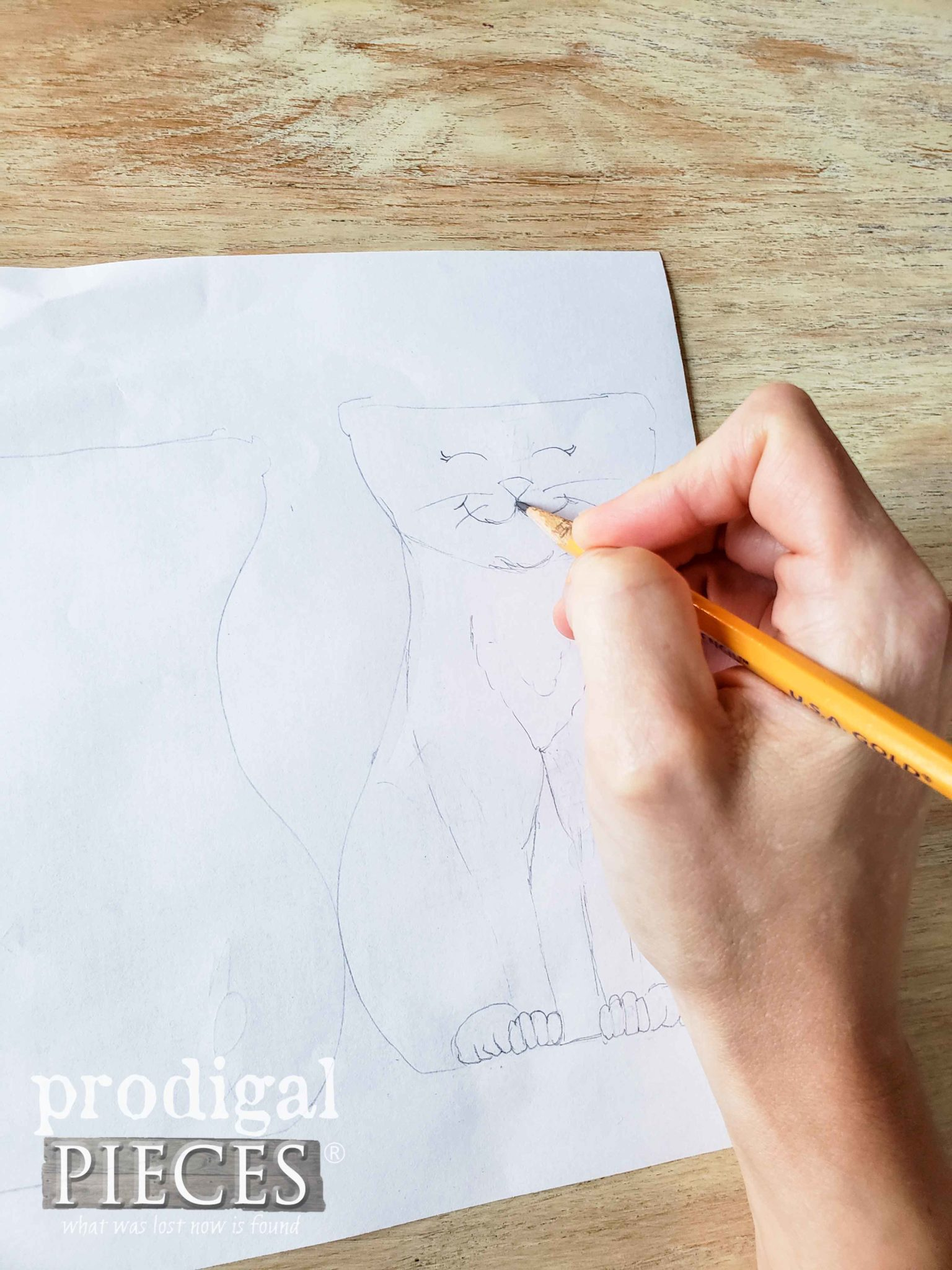 Sketching Cat for DIY Cat Grass Tutorial by Larissa of Prodigal Pieces | prodigalpieces.com