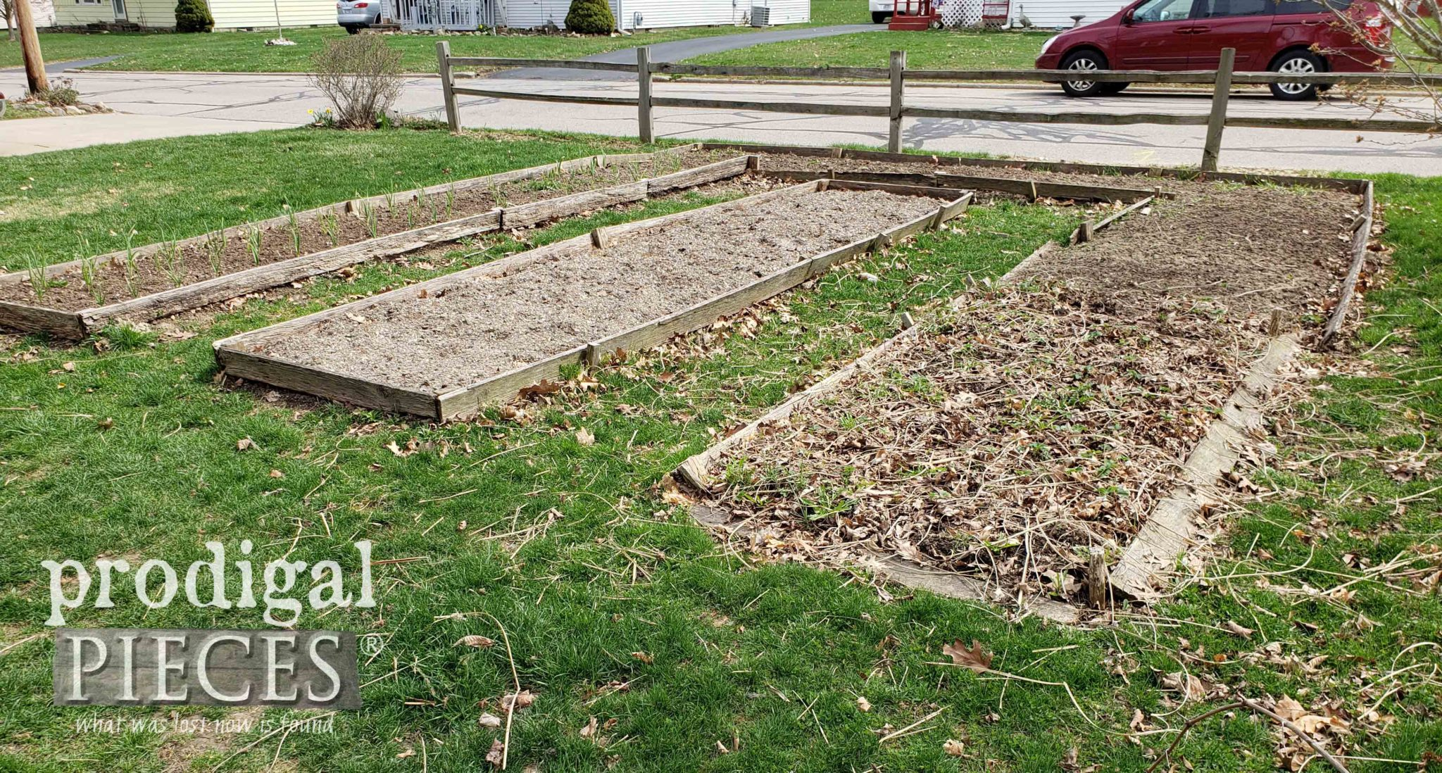 Back of the DIY Raised Garden Bed with June-Bearing Strawberries | prodigalpieces.com #prodigalpieces #diy #home #garden #food