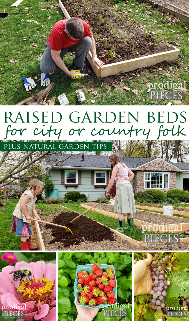 Have your own garden in a city or country setting with this easy & affordable DIY garden bed tutorial | Video tour by Larissa of Prodigal Pieces | prodigalpieces.com #prodigalpieces #diy #garden #home #food