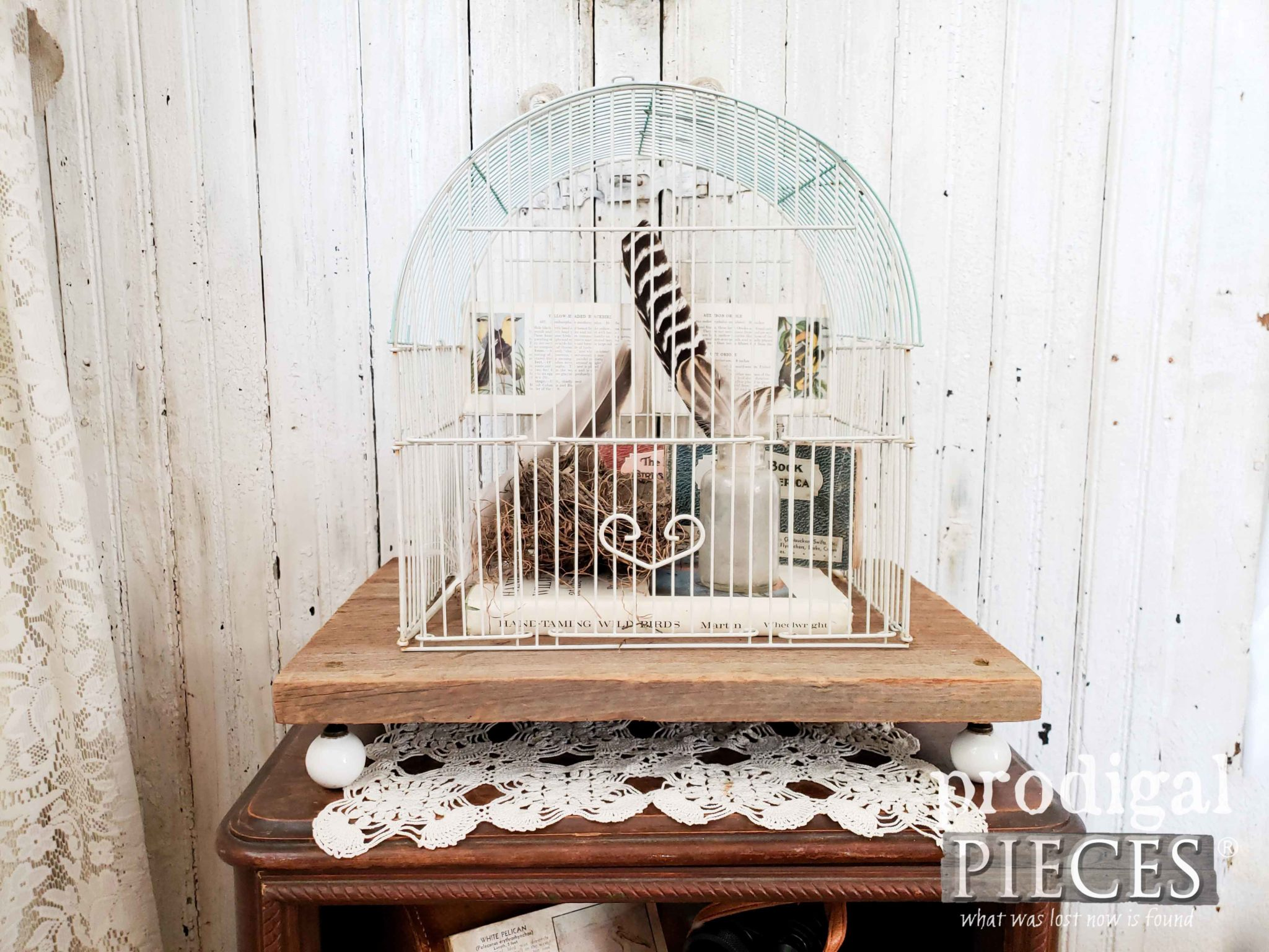 Farmhouse Upcycled Bird Cage Vignette with Birding Paraphernalia by Larissa of Prodigal Pieces | prodigalpieces.com #prodigalpieces #home #farmhouse #birds #homedecor #diy