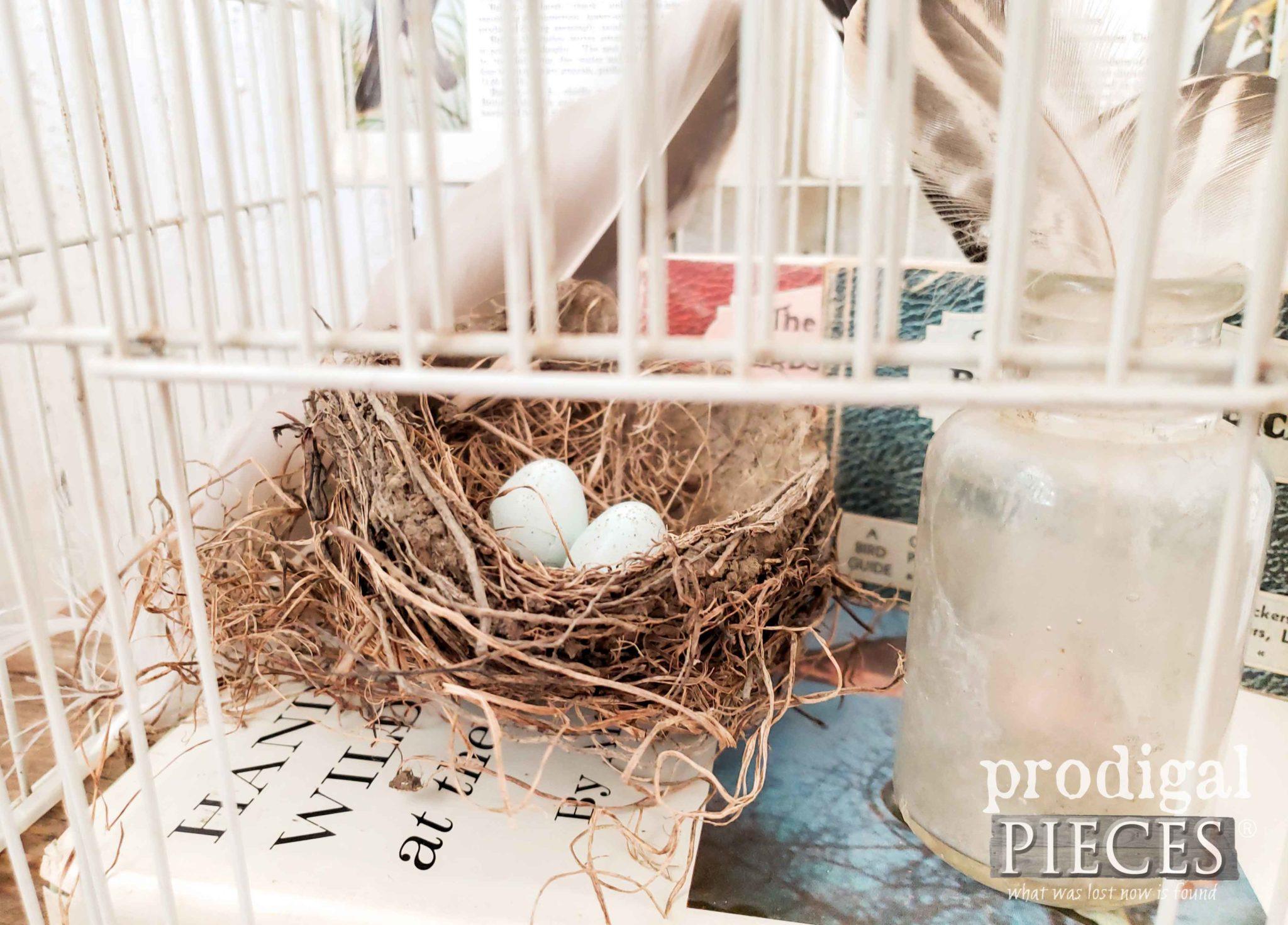 Found Nest with Broken Robins Egg Shells for Farmhouse Vignette | prodigalpieces.com #prodigalpieces #birds #farmhouse #home #homedecor