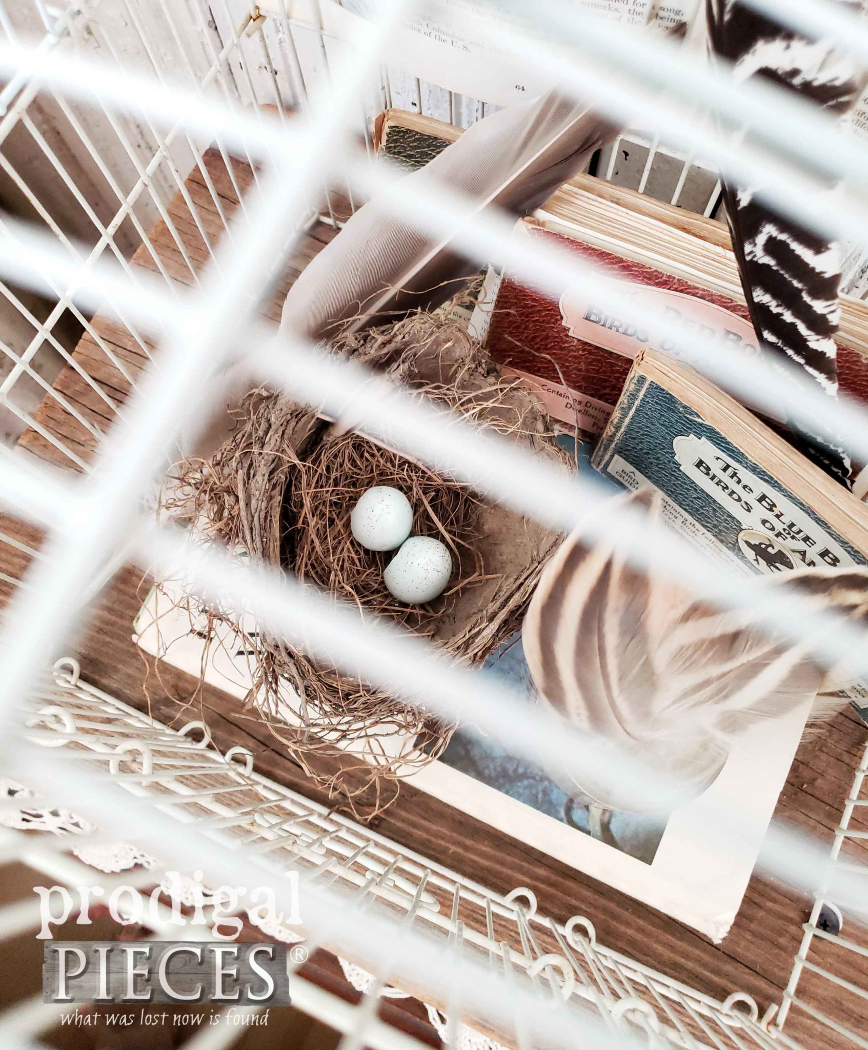 Thrifted Bird Cage Turned Farmhouse Decor by Larissa of Prodigal Pieces | prodigalpieces.com #prodigalpieces #farmhouse #home #homedecor #diy