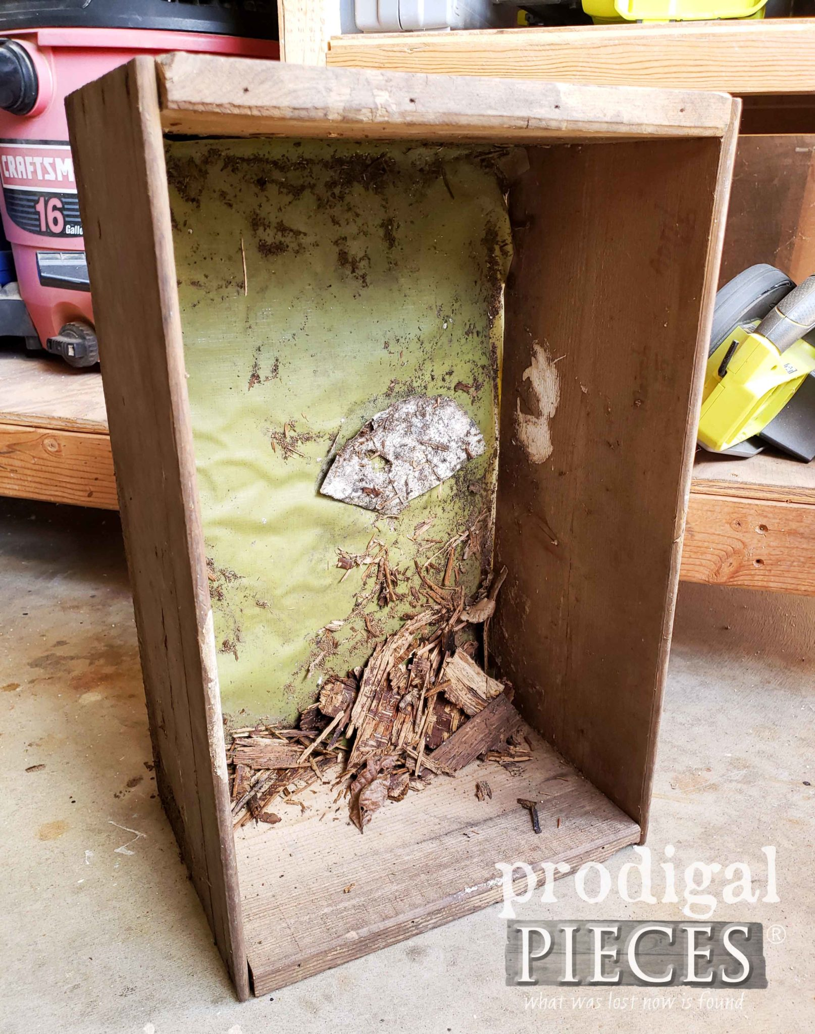 Inside Damaged Wooden Crate | prodigalpieces.com