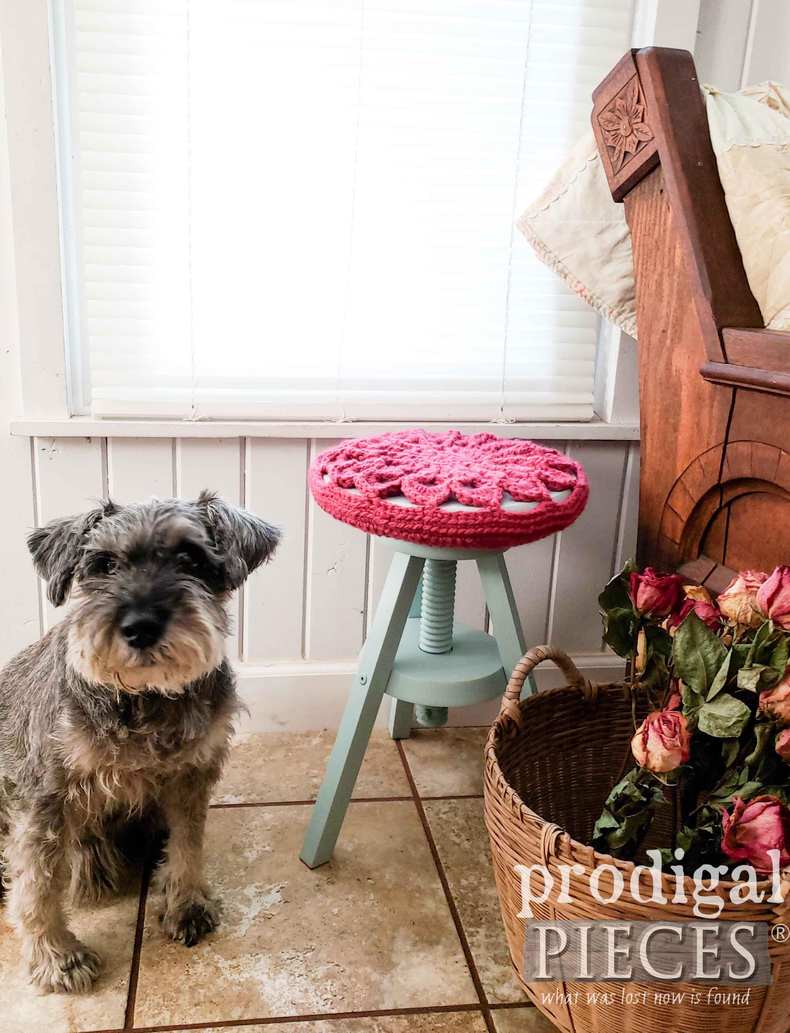 Miniature Schnauzer Posing for Cottage Style Decor | prodigalpieces.com #prodigalpieces #dog #pets #homedecor