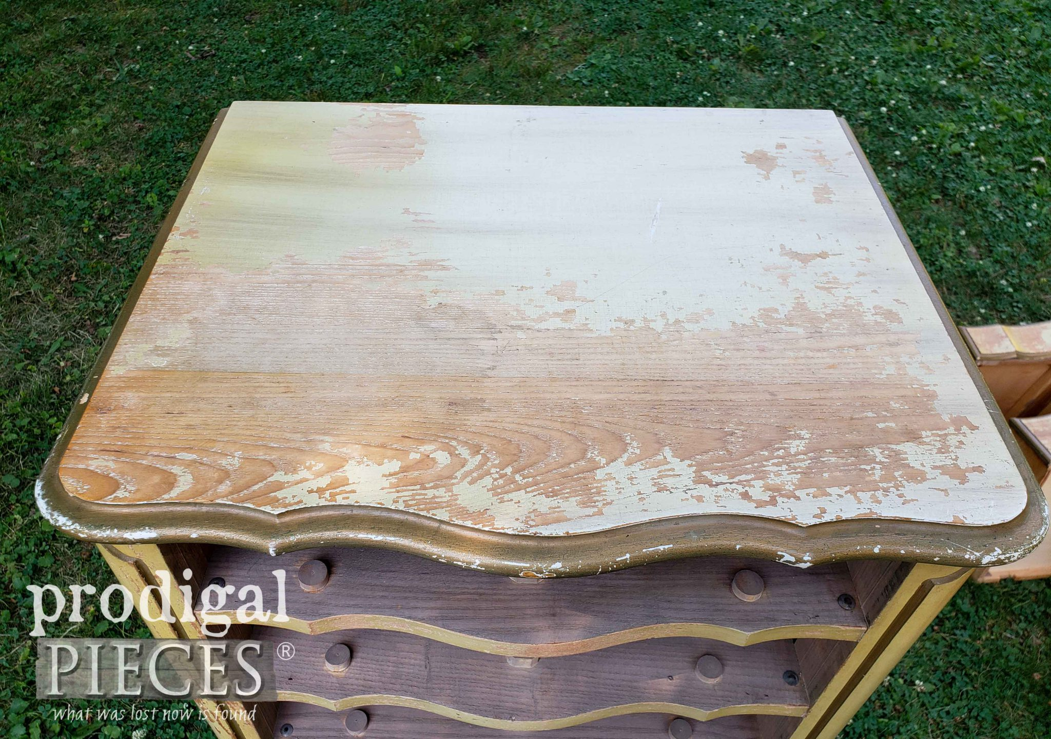Worn Vintage Lingerie Chest Top Before Makeover by Prodigal Pieces | prodigalpieces.com #prodigalpieces #furniture #vintage #home #french #homedecor #diy
