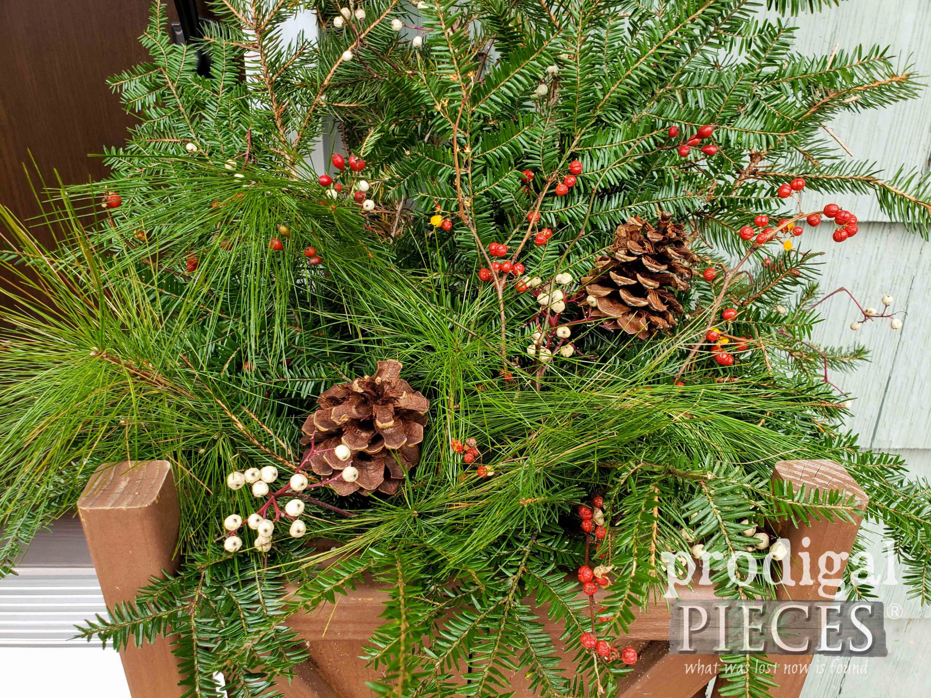 Rustic Farmhouse Christmas Planter with Fresh Foraged Greens | Video tutorial by Larissa of Prodigal Pieces | prodigalpieces.com #prodigalpieces #christmas #garden #home #homedecor #diy