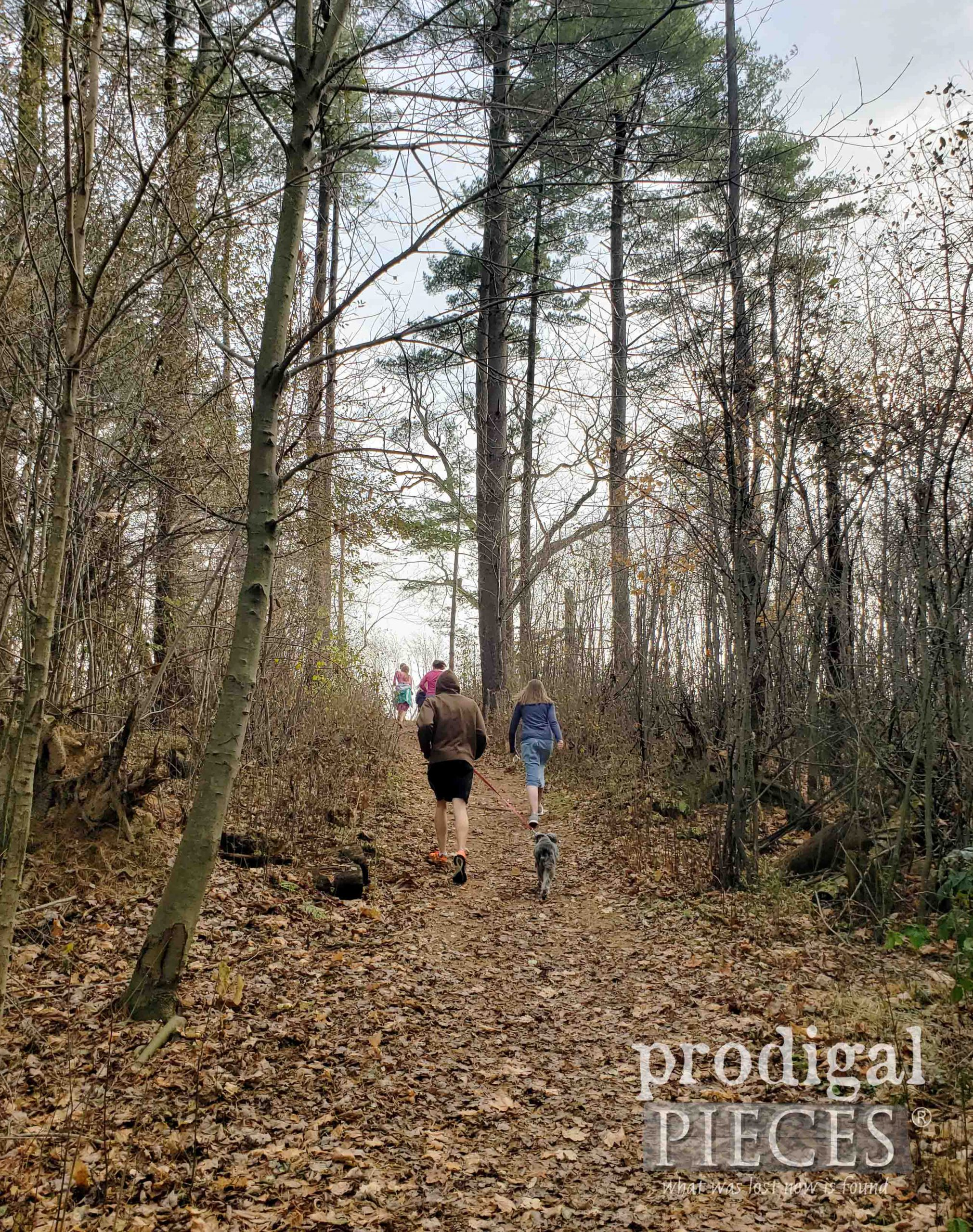 Nature Walk with My Kids | prodigalpieces.com