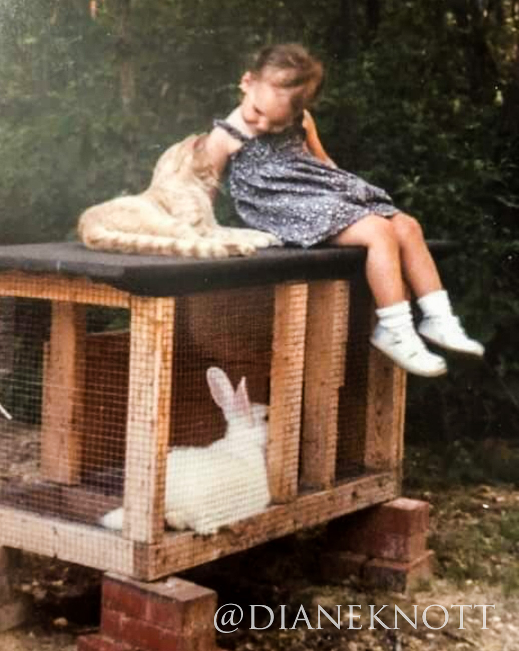 Little Girl with Rabbit Hutch   prodigalpieces.com