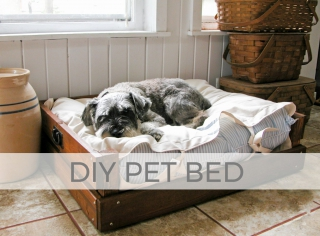 Build a DIY Pet Bed with tutorial by Larissa of Prodigal Pieces | prodigalpieces.com #prodigalpieces