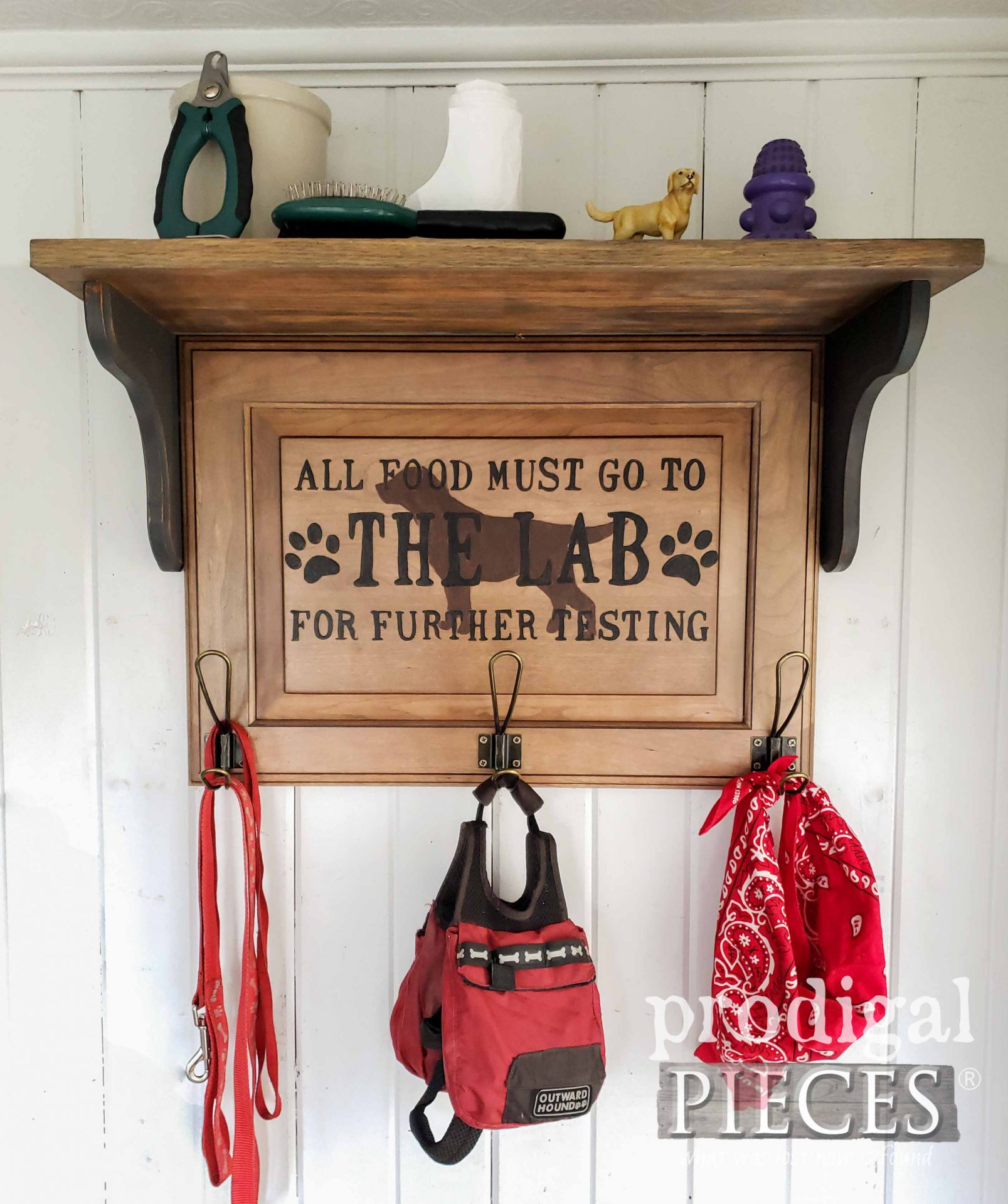 DIY Upcycled Pet Organizer Coat Rack made from Reclaimed Cupboard Door by Larissa of Prodigal Pieces | prodigalpieces.com #prodigalpieces #diy #home #pets #dogs #cats #homedecor