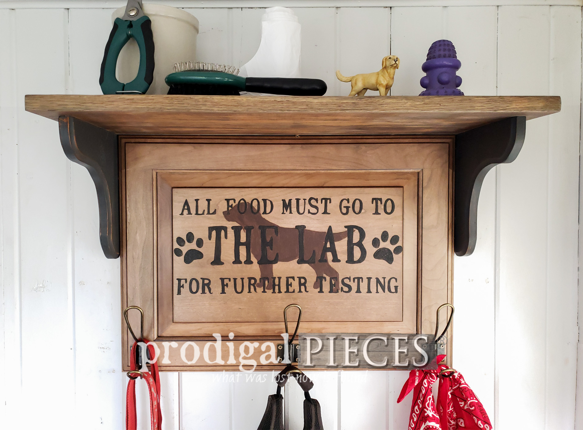 Featured Upcycled Pet Organizer from Cupboard Door by Larissa of Prodigal Pieces | prodigalpieces.com #prodigalpieces #diy #home #pets #farmhouse #homedecor