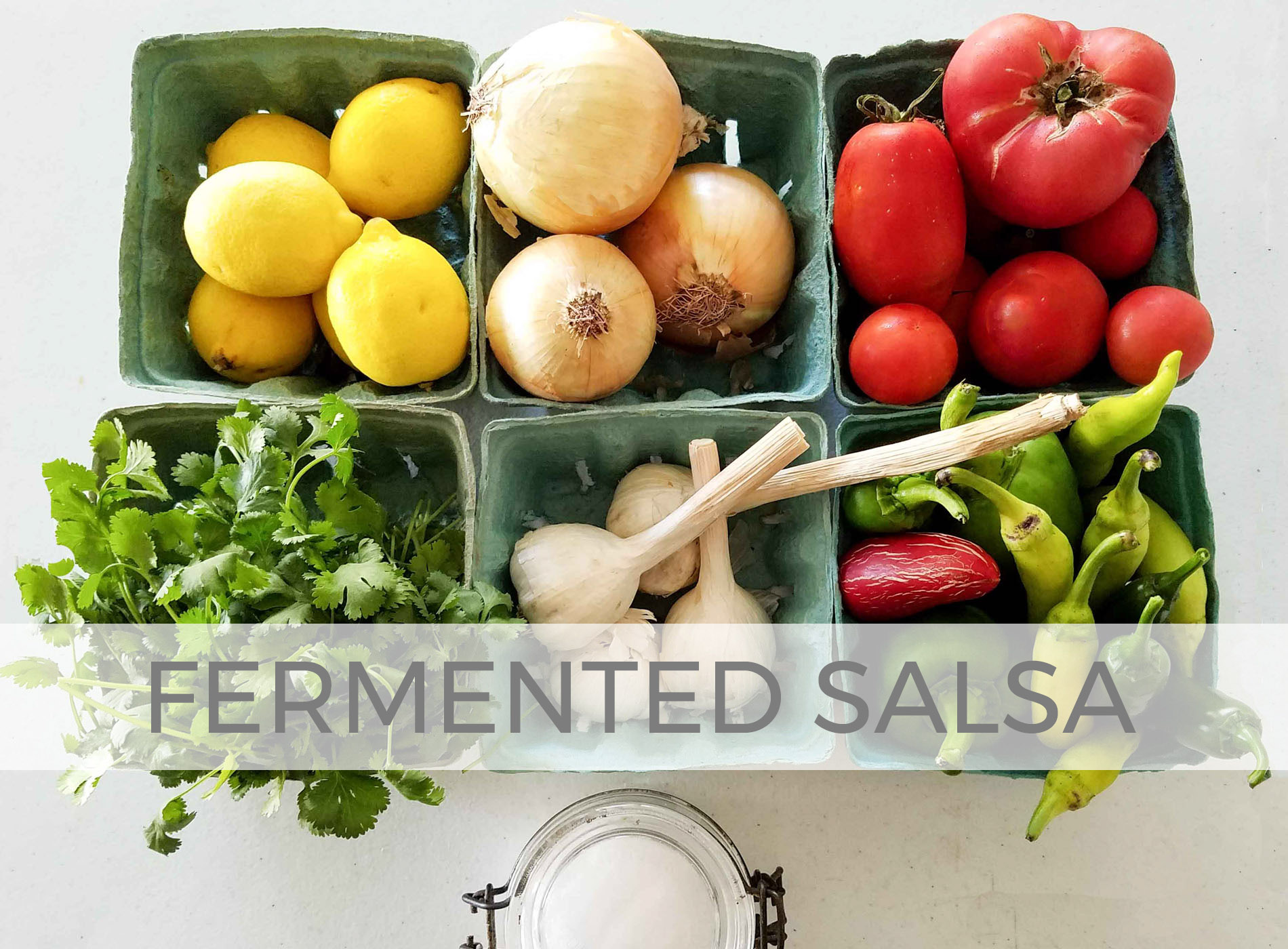 Fermented Salsa Recipe by Larissa of Prodigal Pieces | prodigalpieces.com