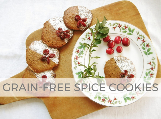Grain-Free Spice Cookies Recipe by Larissa of Prodigal Pieces | prodigalpieces.com