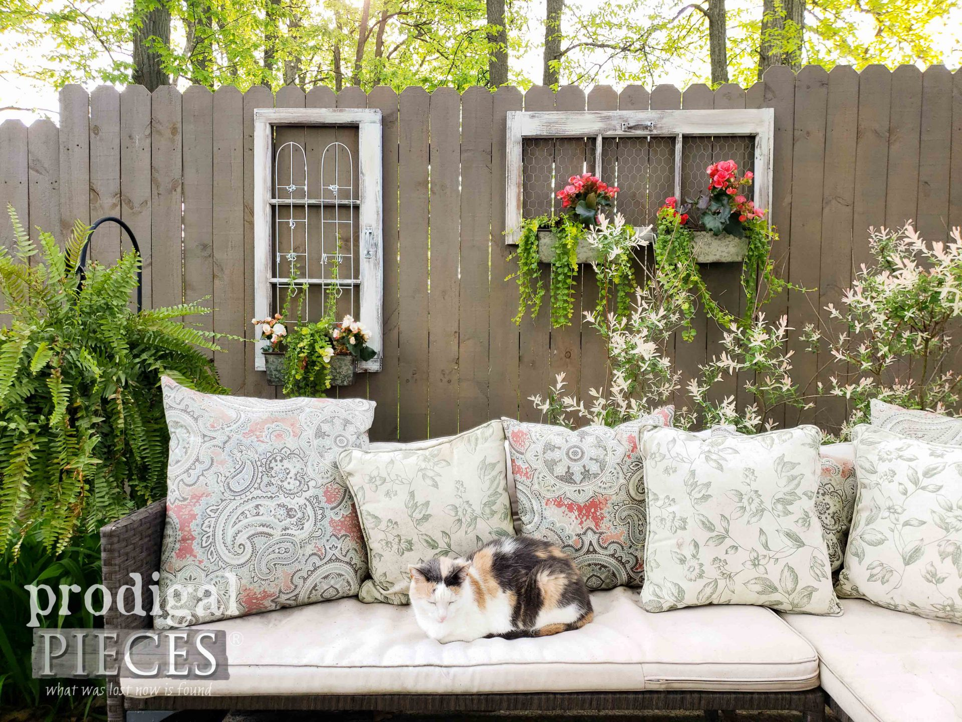 Calico Cat with DIY Patio Decor by Larissa of Prodigal Pieces | prodigalpieces.com #prodigalpieces #diy #home #homedecor #garden