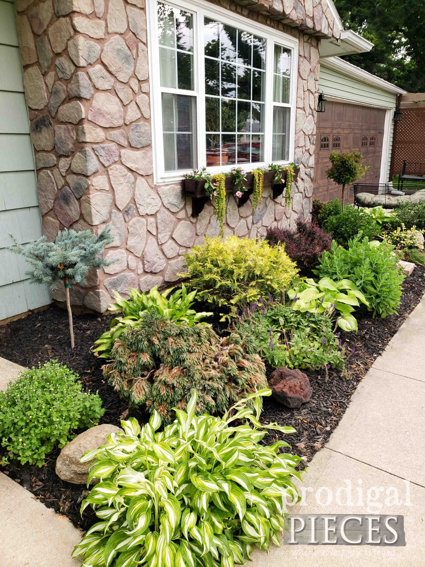 Front Landscaping of Home by Prodigal Pieces | prodigalpieces.com #prodigalpieces #garden #diy #home #homedecor