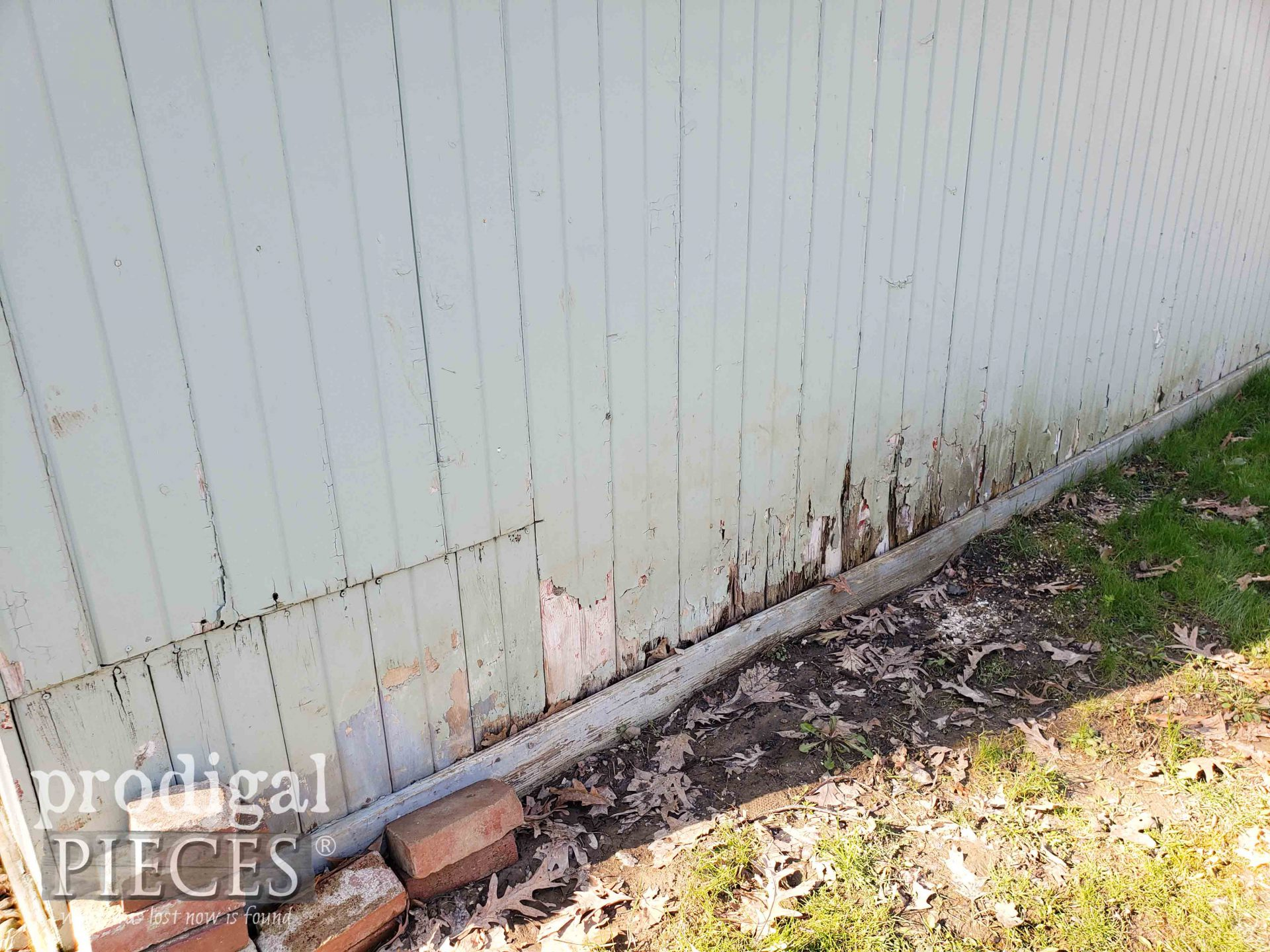 Rotted Shed Wall | prodigalpieces.com
