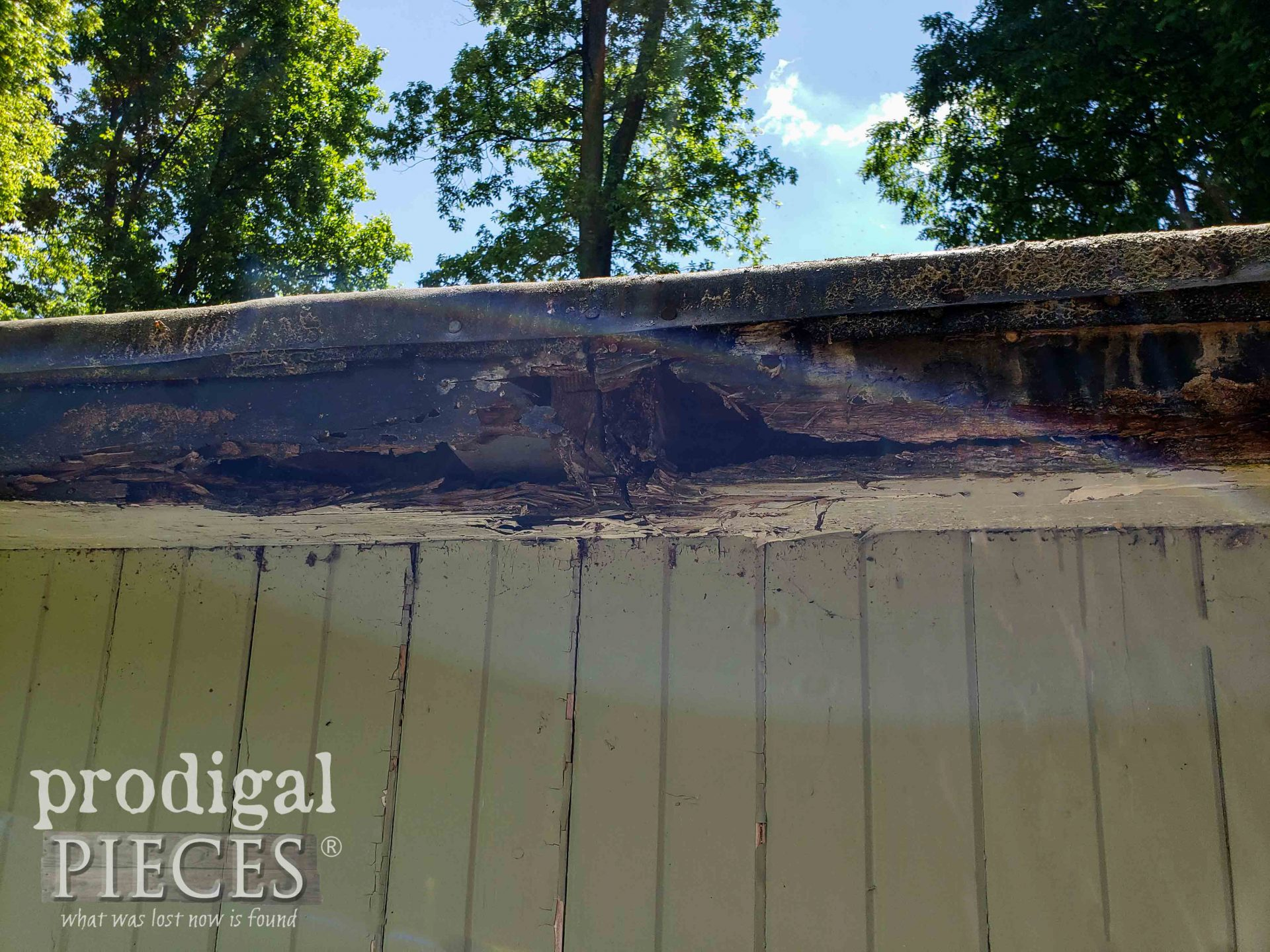 Garden Shed Rotted Soffit | prodigalpieces.com