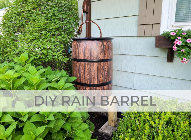 DIY Rain Barrel by Larissa of Prodigal Pieces | prodigalpieces.com