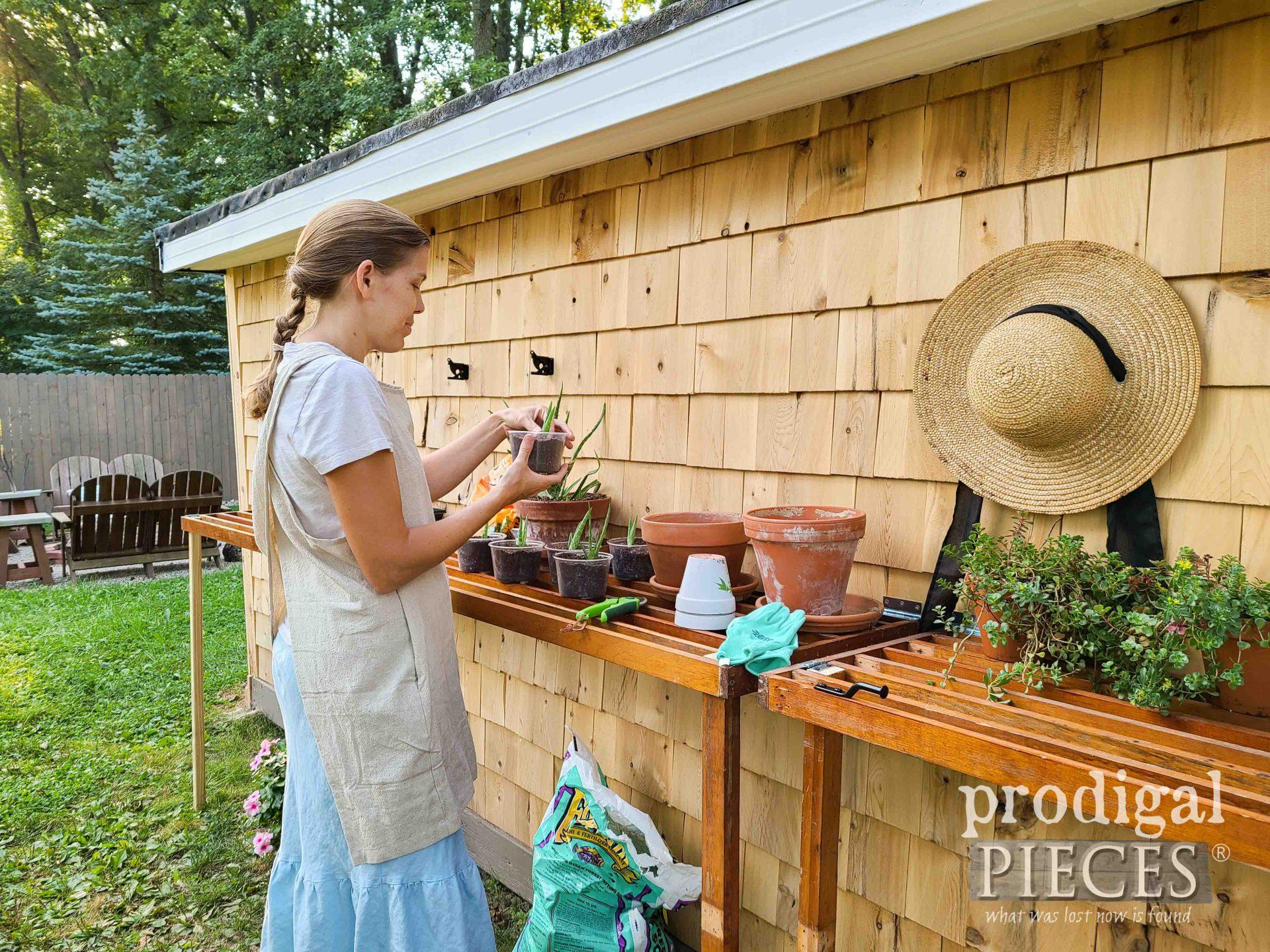 Larissa of Prodigal Pieces Gardening   prodigalpieces.com #prodigalpieces #garden #diy #homesteading