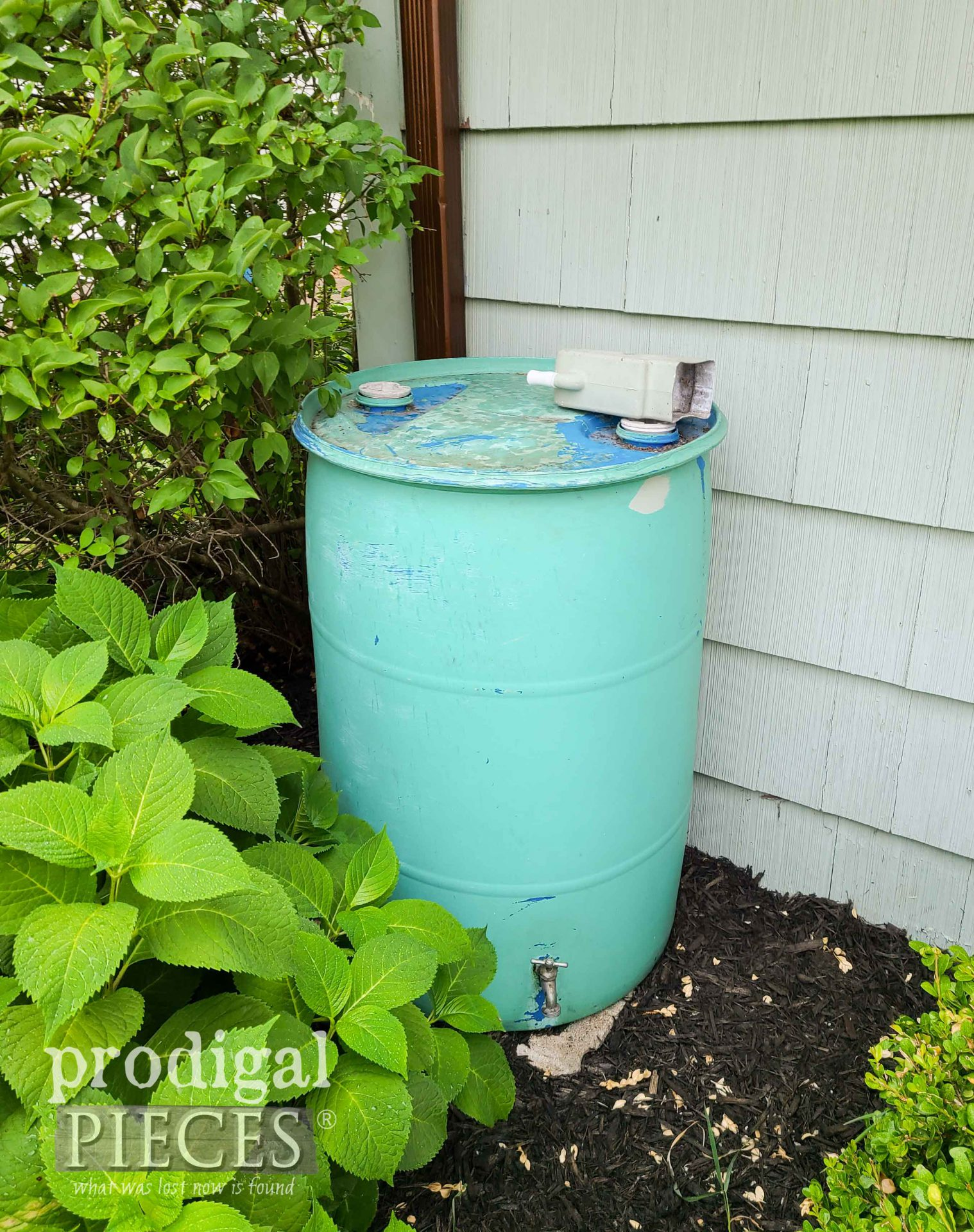 DIY Rain Barrel Before by Prodigal Pieces | prodigalpieces.com #prodigalpieces