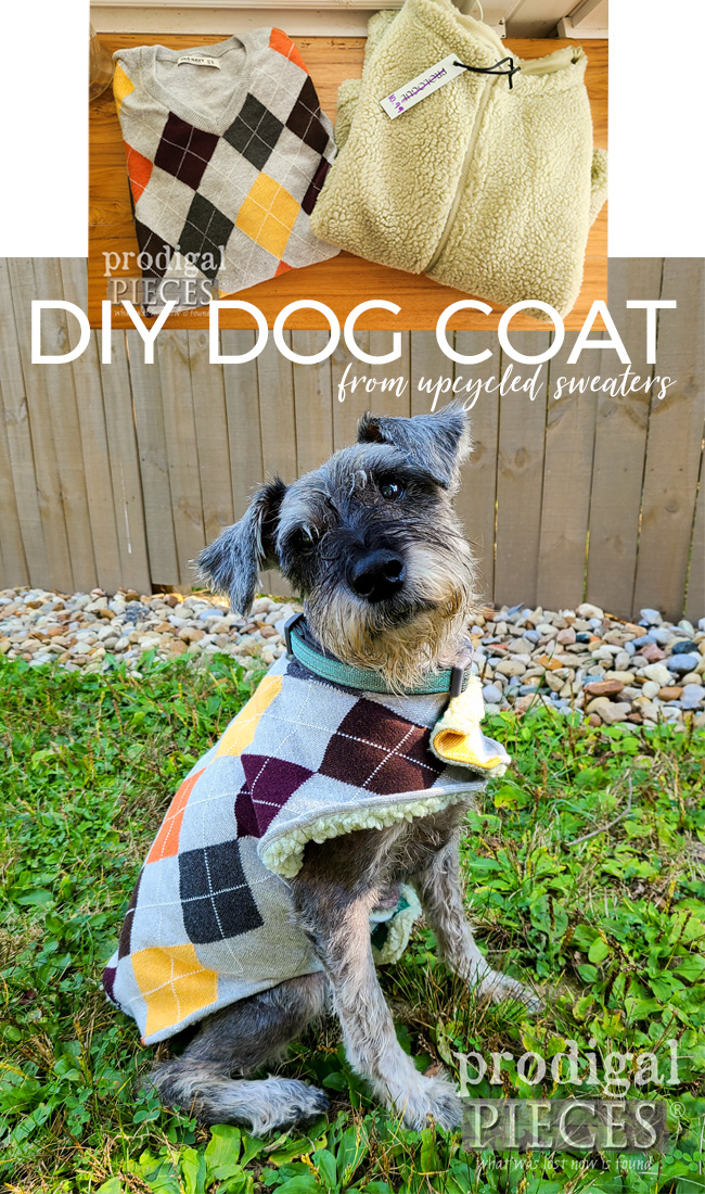 Adorable DIY Dog Coat made from Upcycled Sweaters by Larissa of Prodigal Pieces | prodigalpieces.com #prodigalpieces #dogs #pets #sewing #refashion #upcycled