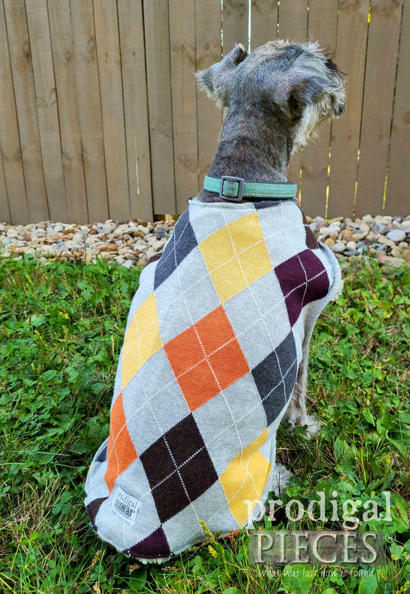 Super Cute DIY Dog Sweater by Larissa of Prodigal Pieces | prodigalpieces.com #prodigalpieces #sewing #dog #diy #dog #pets