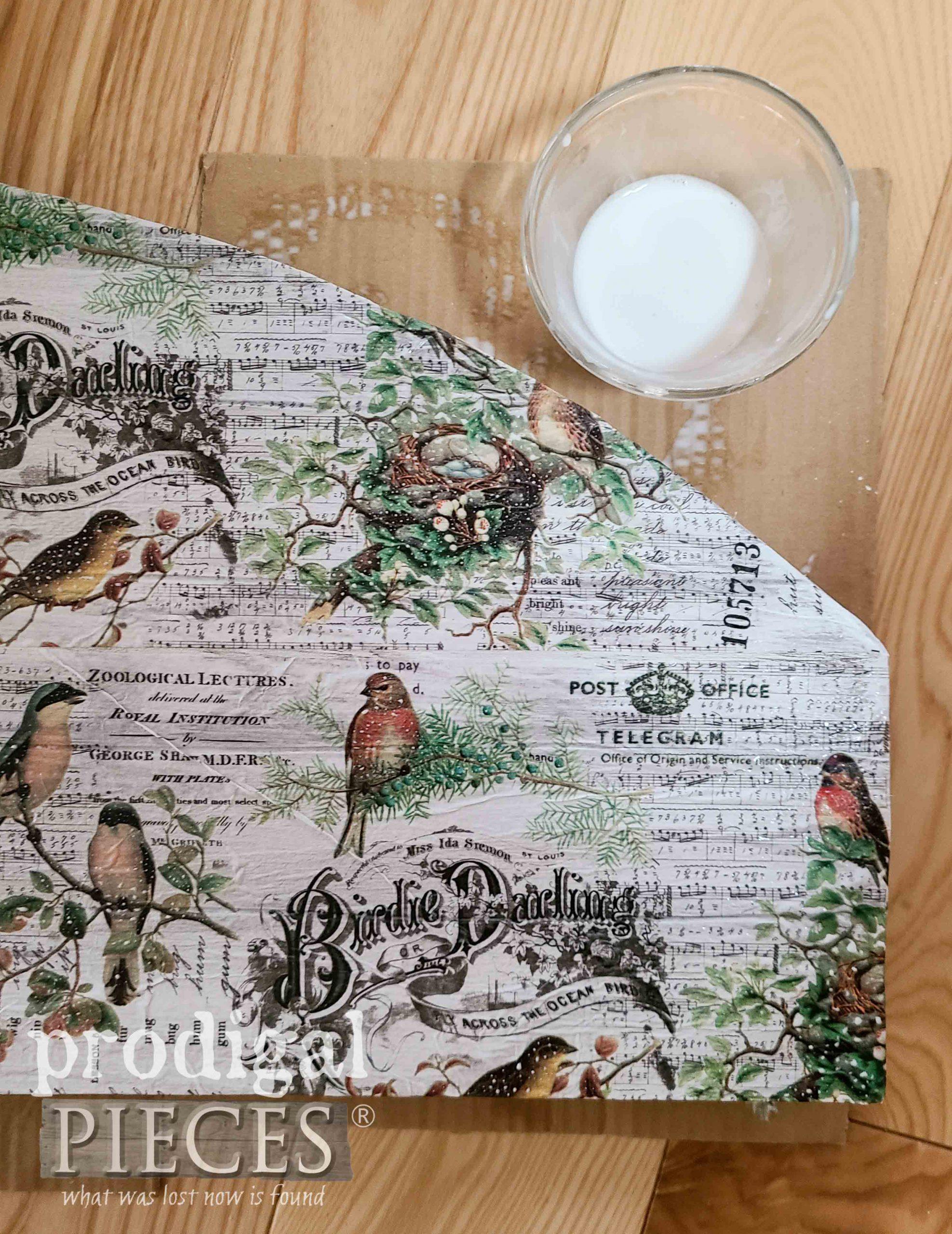 Bird Decoupage Paper on DIY Decoupage Coat Rack by Prodigal Pieces | prodigalpieces.com