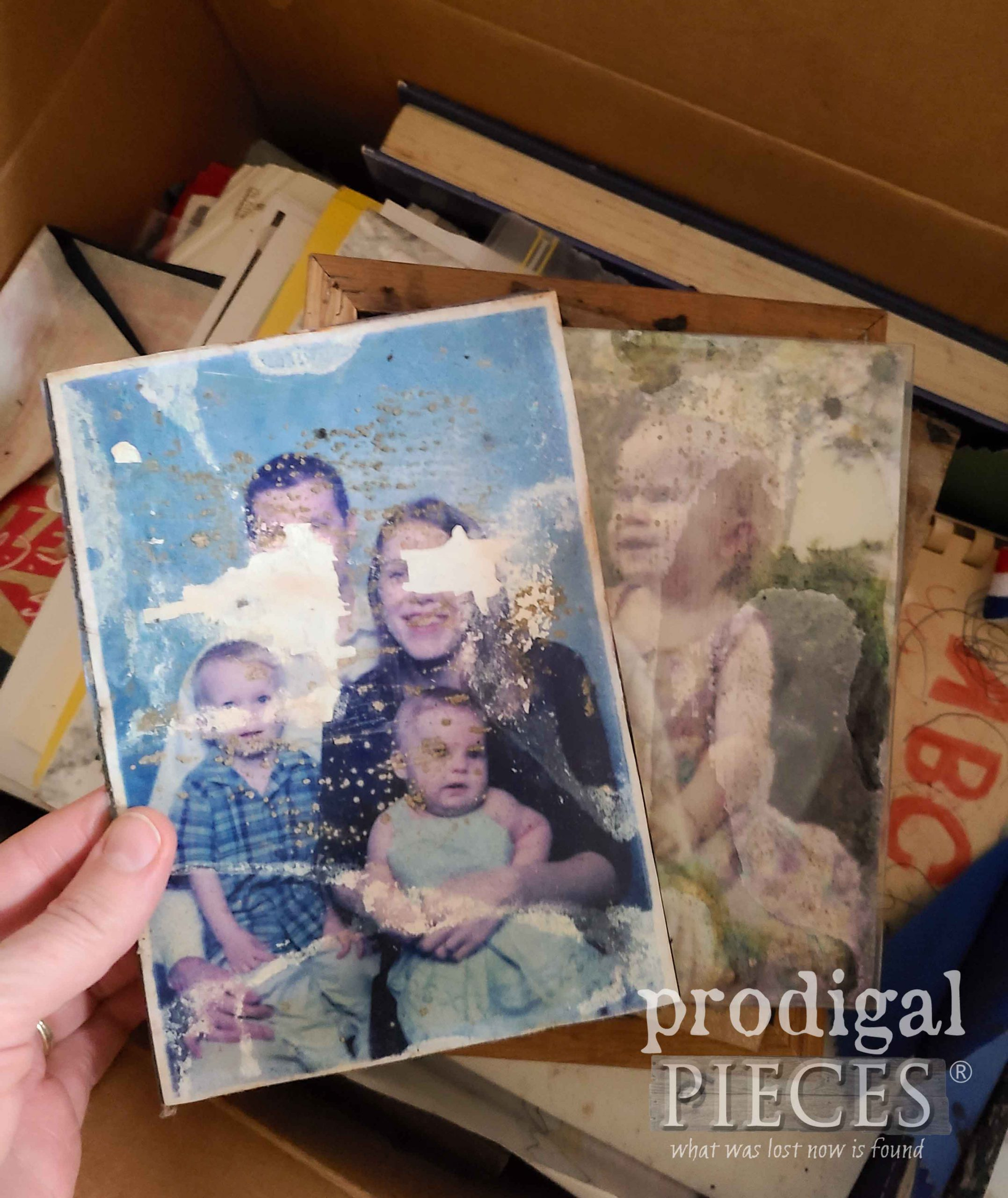 Damaged Photo | prodigalpieces.com